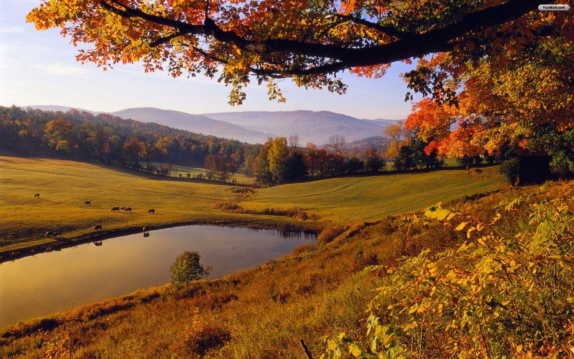 landscape autumn hd wallpaper - photo #5