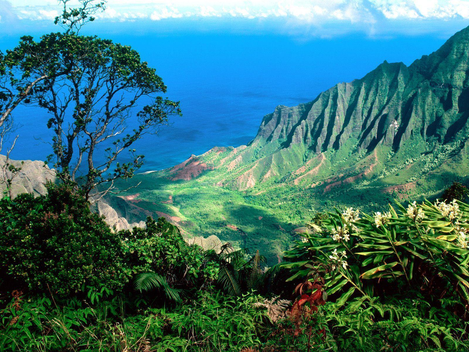 Desktop Wallpapers · Gallery · Nature · Kalalau Valley, Kauai