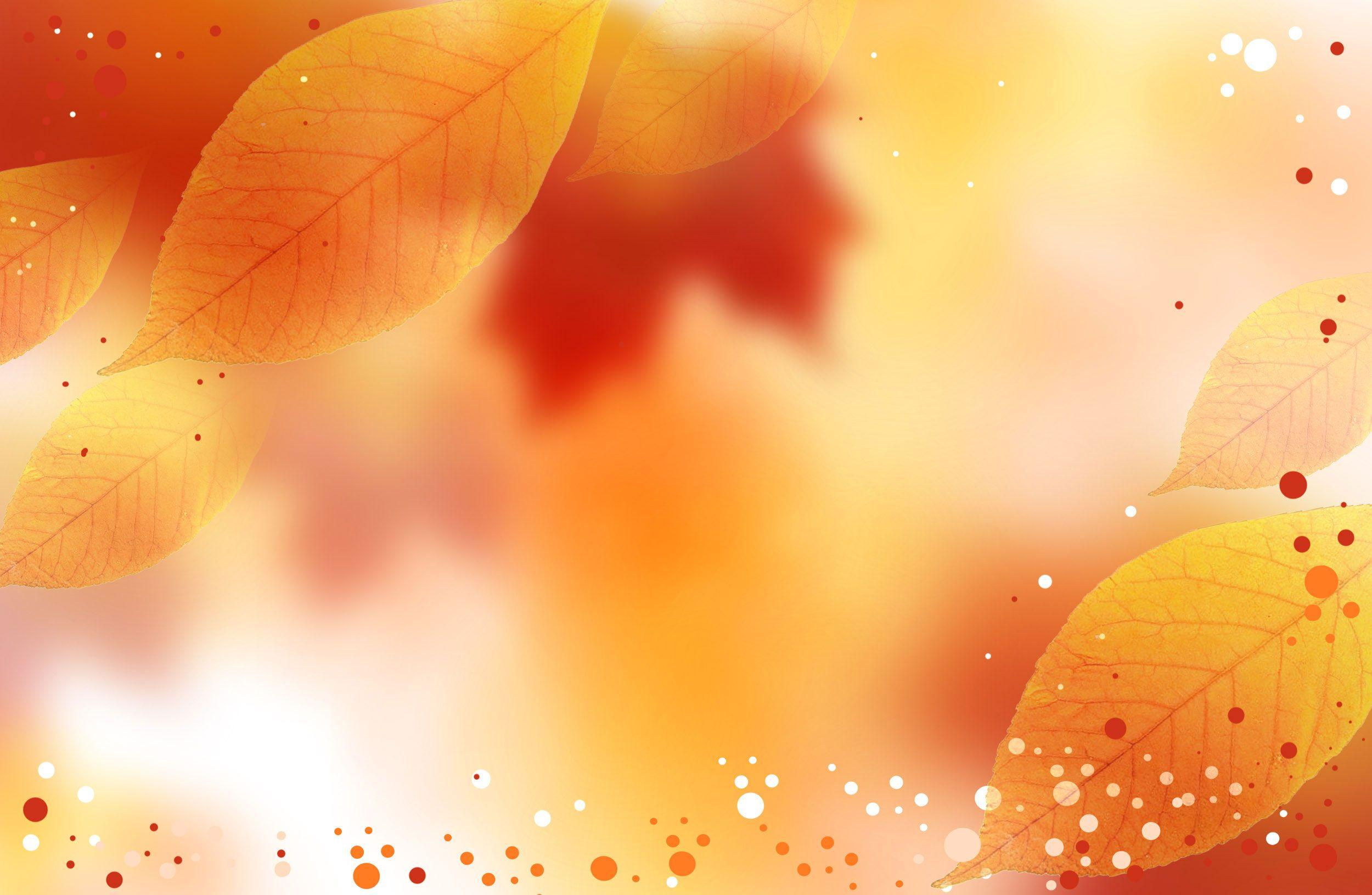 Fall Backgrounds Wallpapers Wallpaper Cave