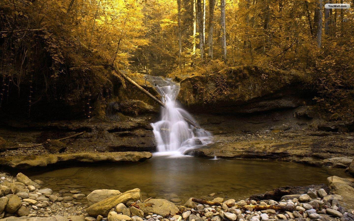 Forest waterfall wallpapers wallpaper cave for Paesaggi autunnali per desktop