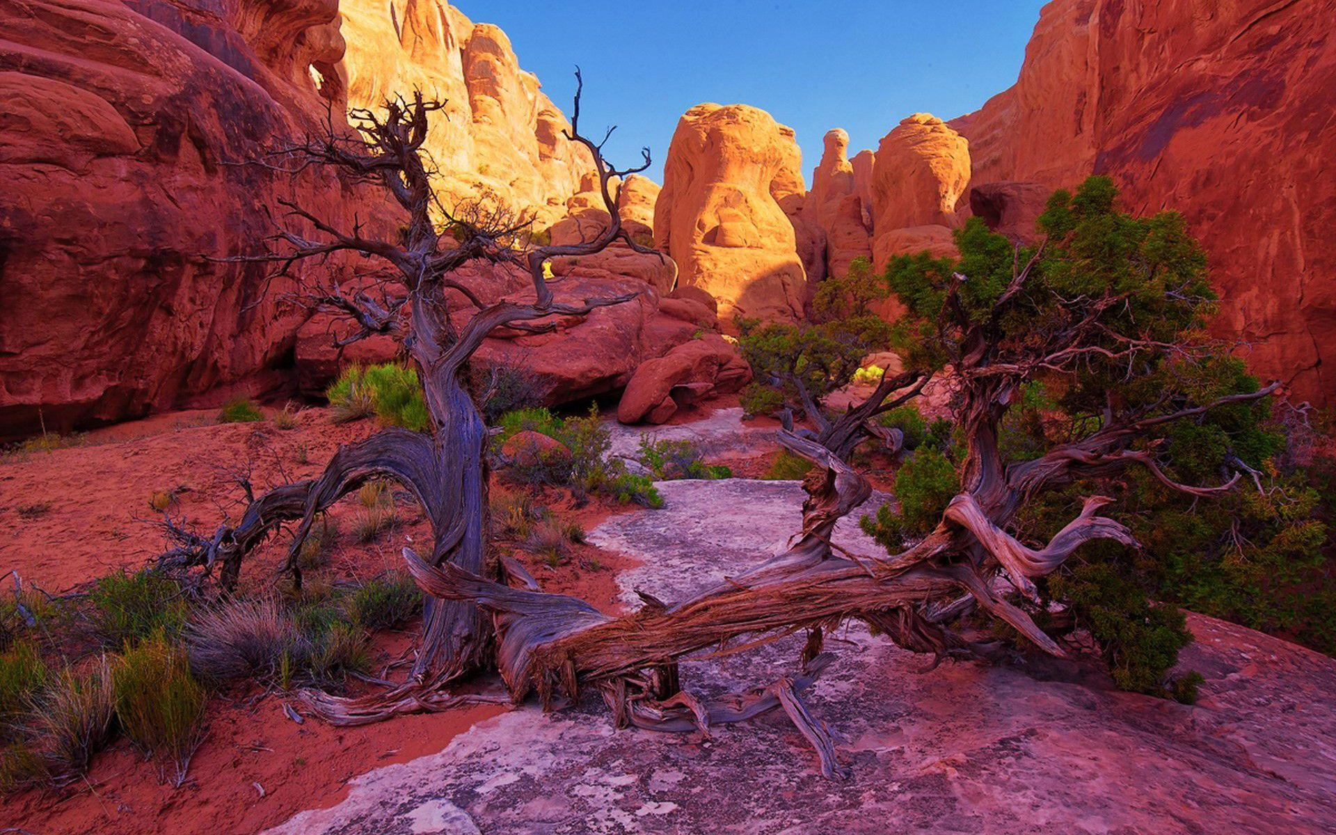 Fiery Furnace Arches National Park