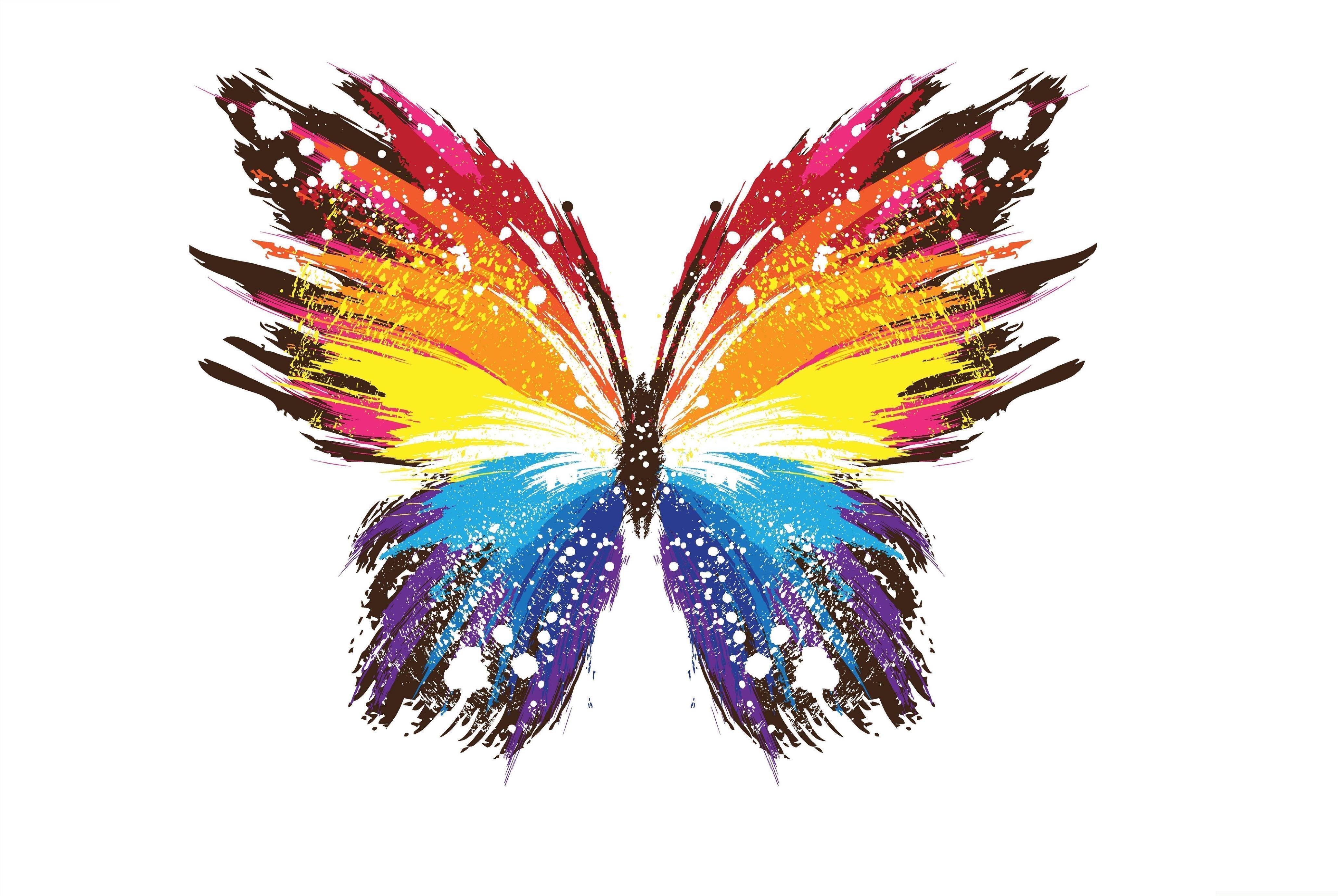hd rainbow butterfly wallpaper - photo #21