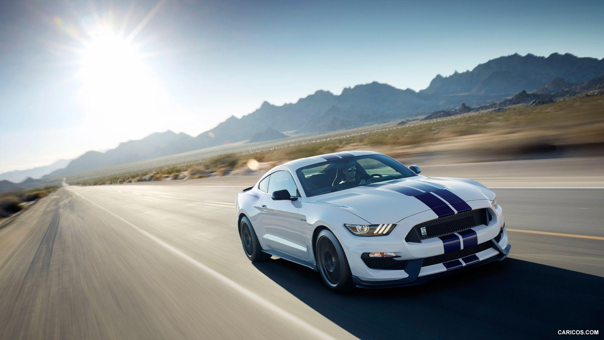 2016 ford mustang shelby wallpapers - wallpaper cave