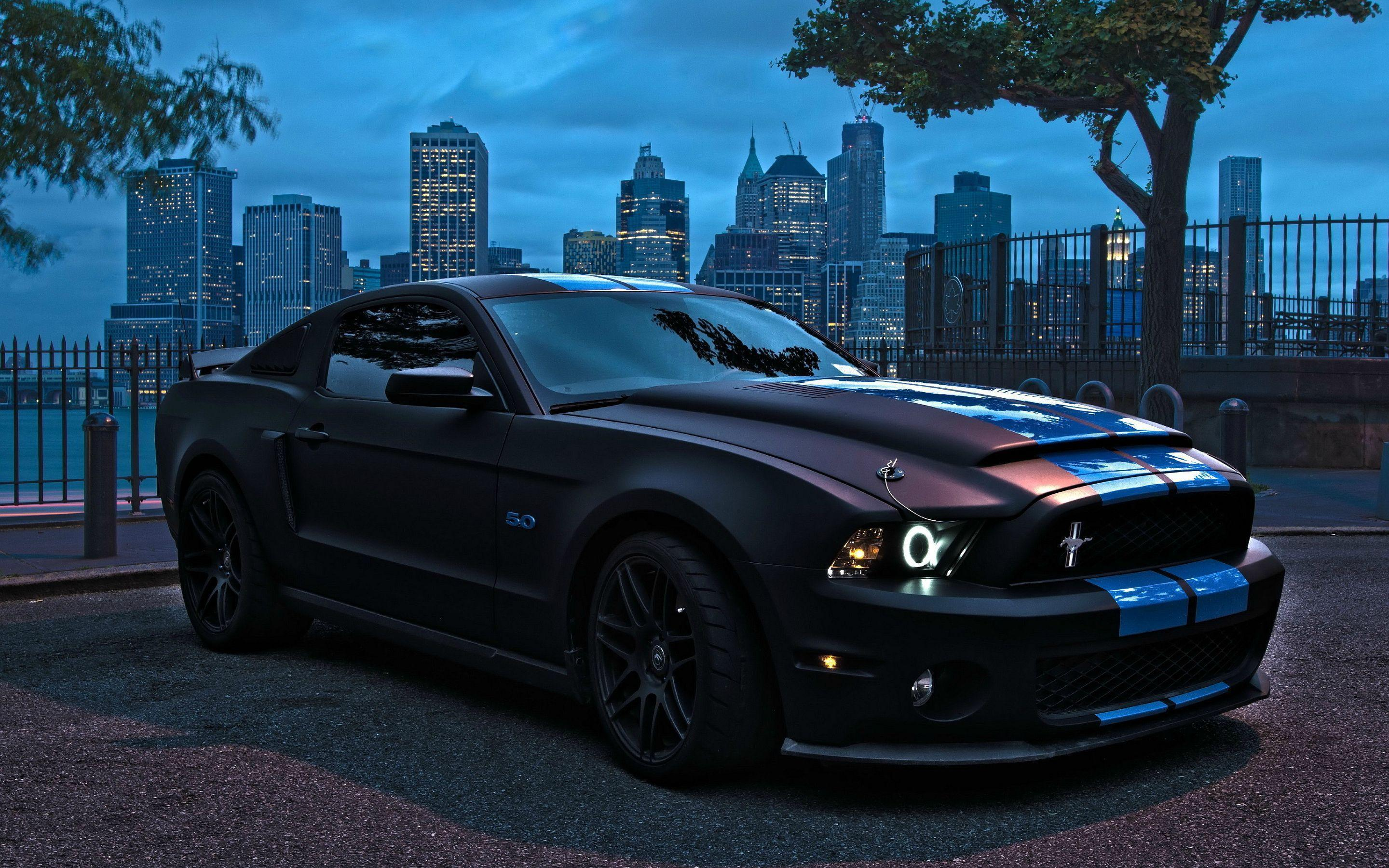 Best Ford Mustang Shelby Wallpapers HD Backgrounds