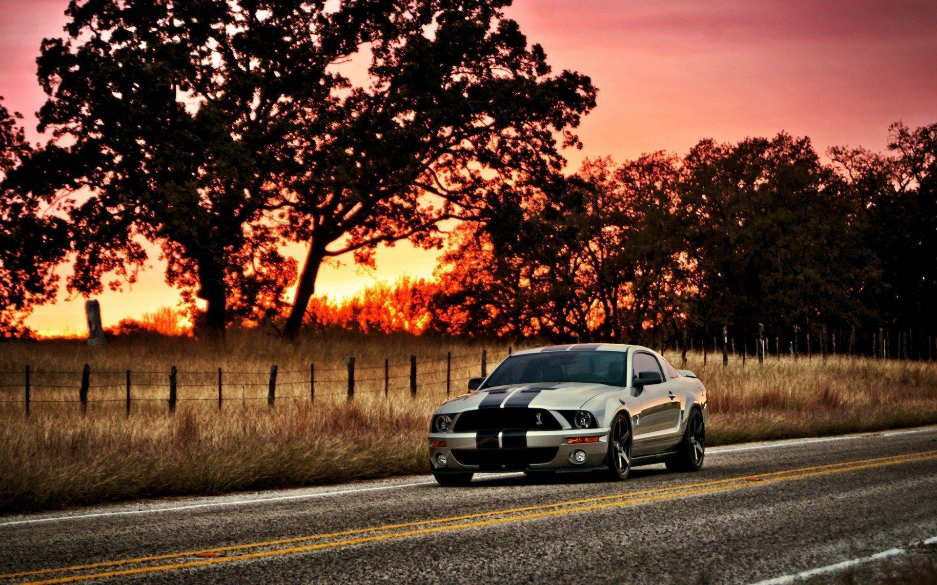 Picture 2016, Ford Mustang Shelby GT500 Muscle Car Wallpapers