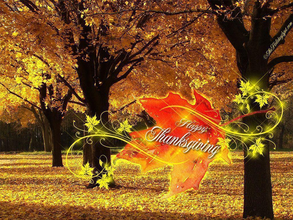 1024x768 turkey desktop pc - photo #45