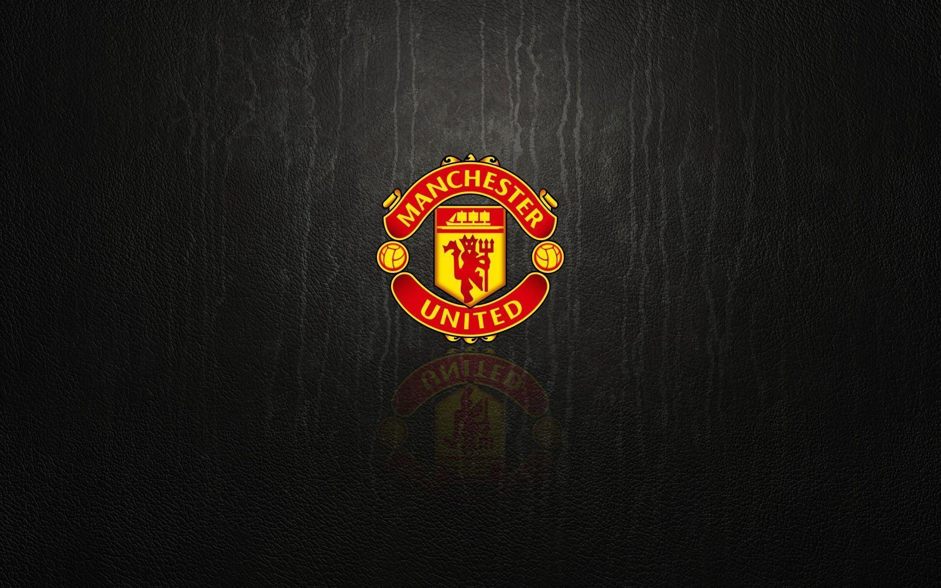 Manchester United logo, logotype. All logos, emblems, brands ...