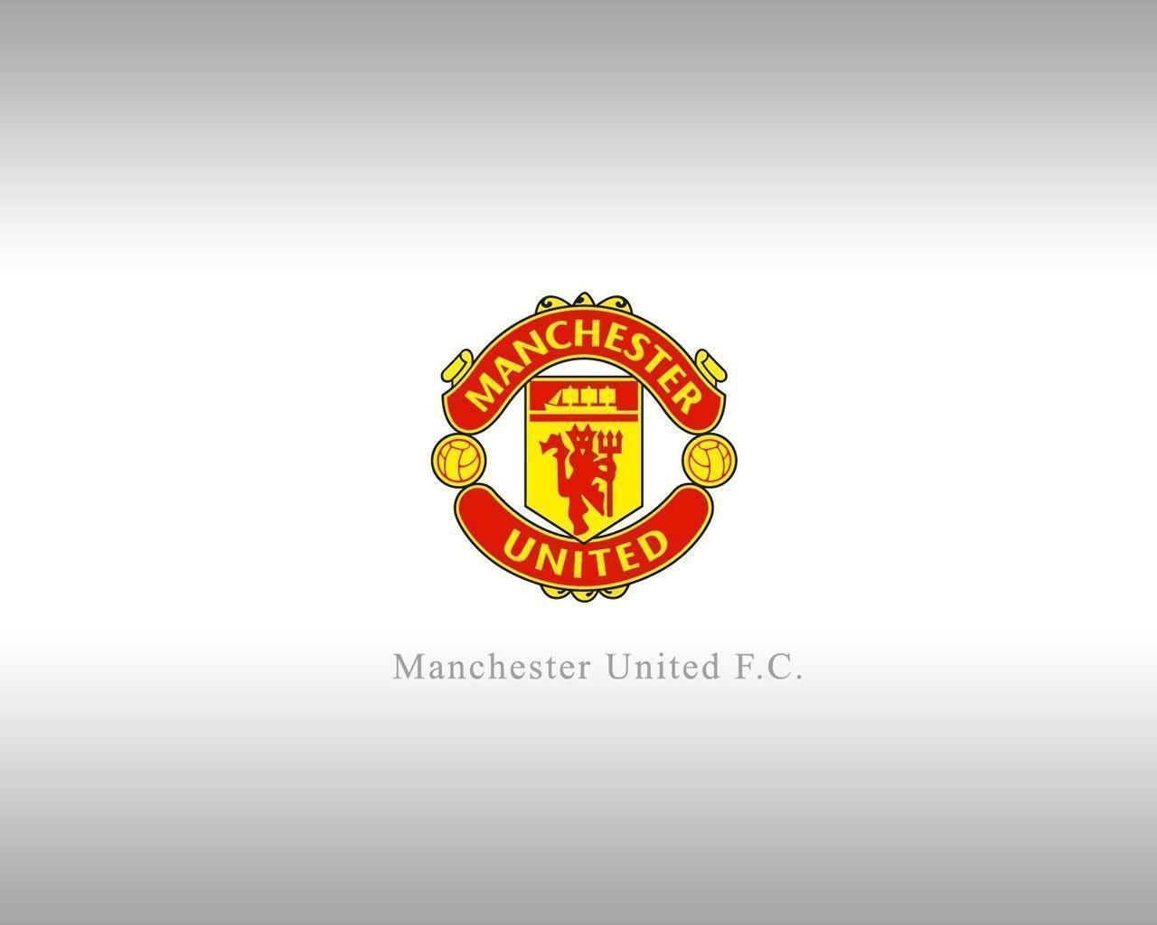 manchester united wallpapers 3d 2016 wallpaper cave