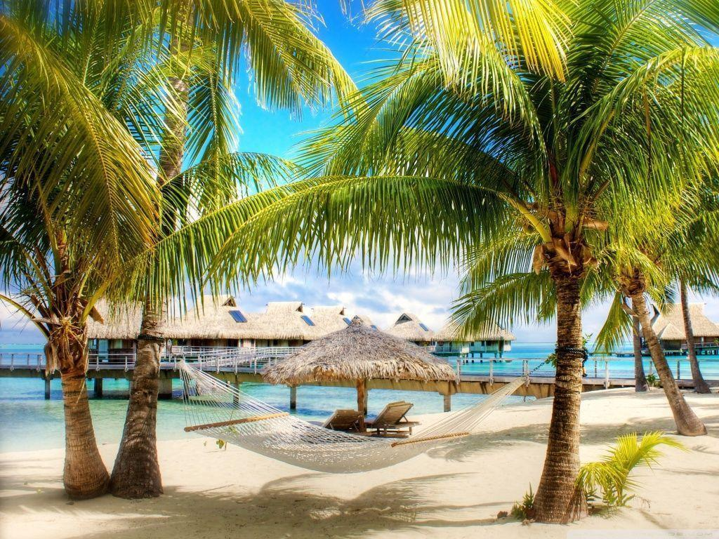 Hd Tropical Island Beach Paradise Wallpapers And Backgrounds: TROPICAL WALLPAPERS 2016