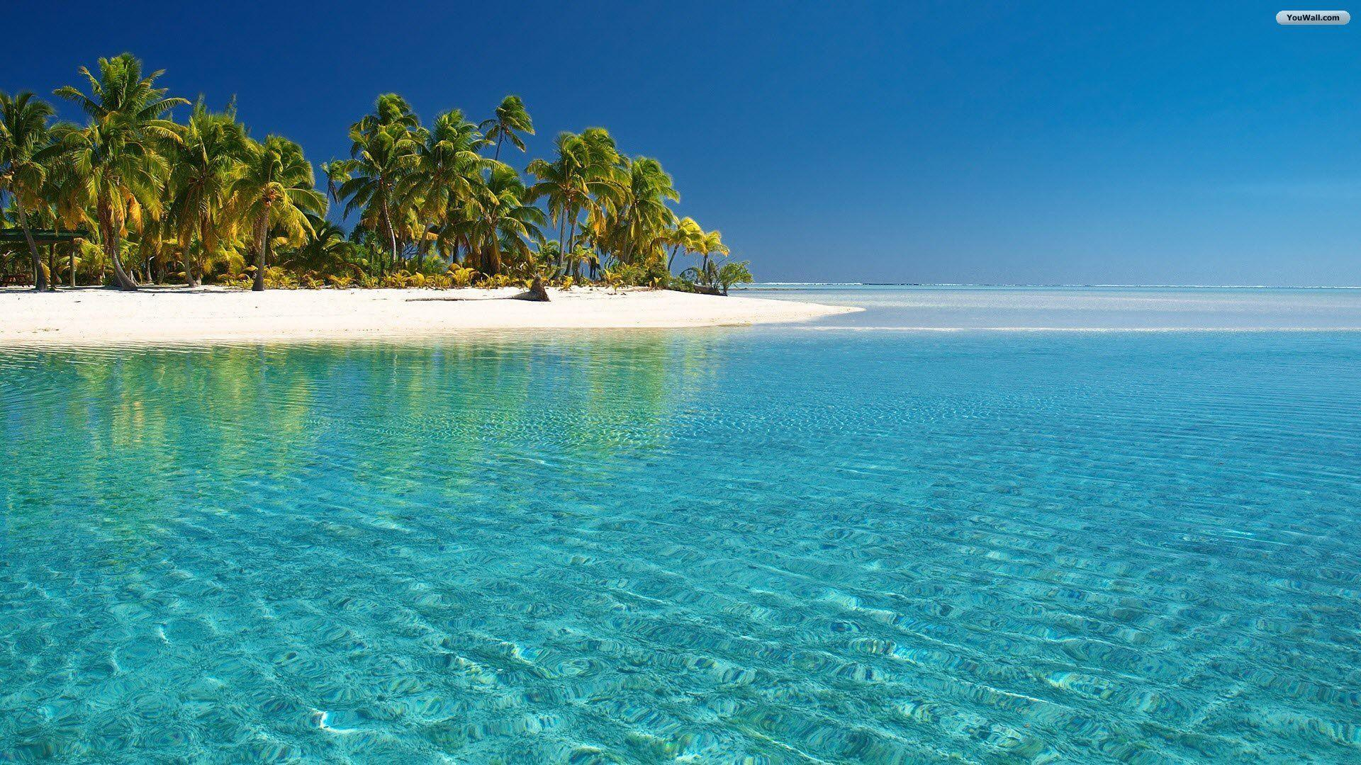 Tropical Wallpapers 2016
