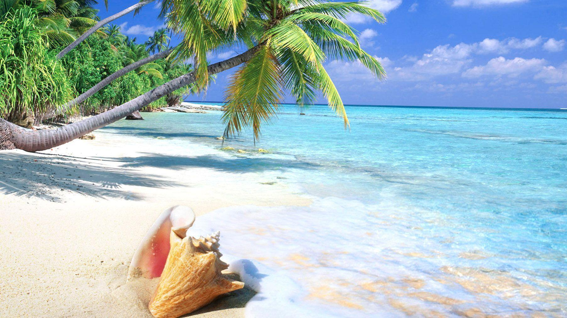 awesome tropical beach wallpapers - photo #17