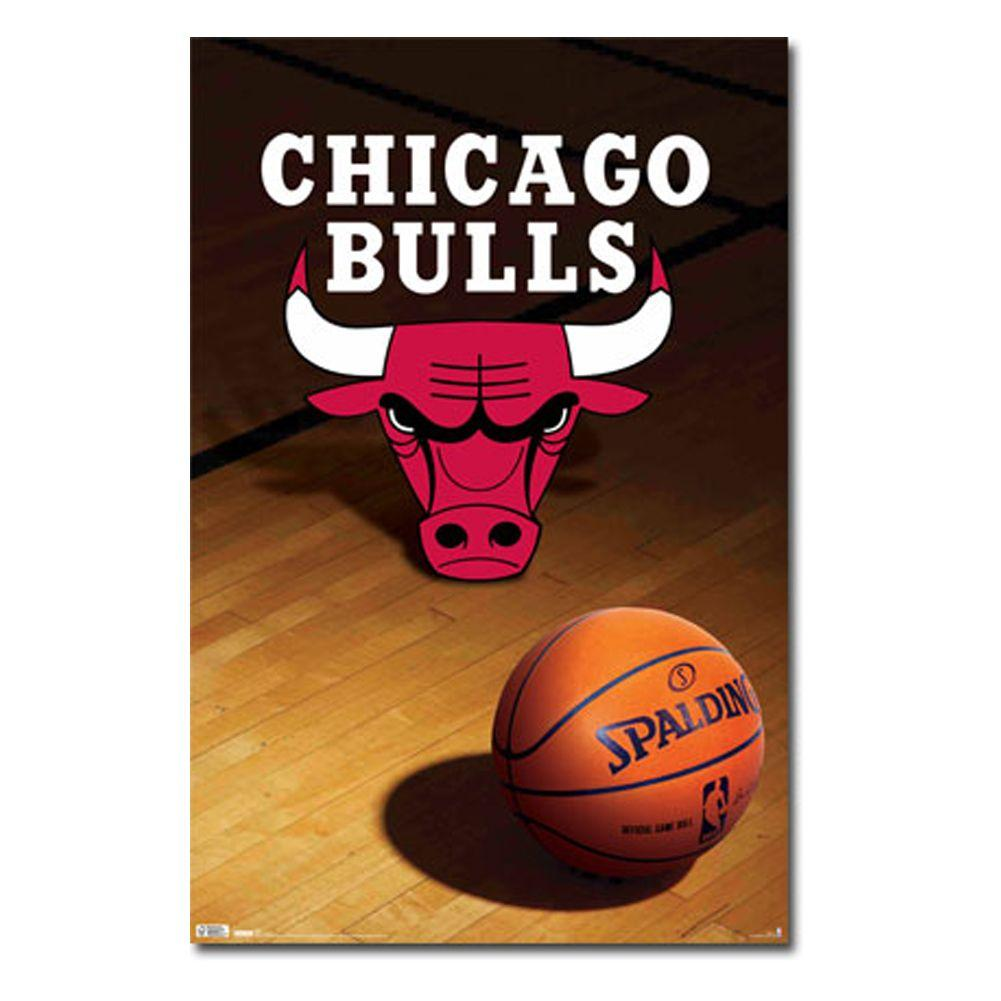Chicago Bulls Logo Wallpapers HD 13894