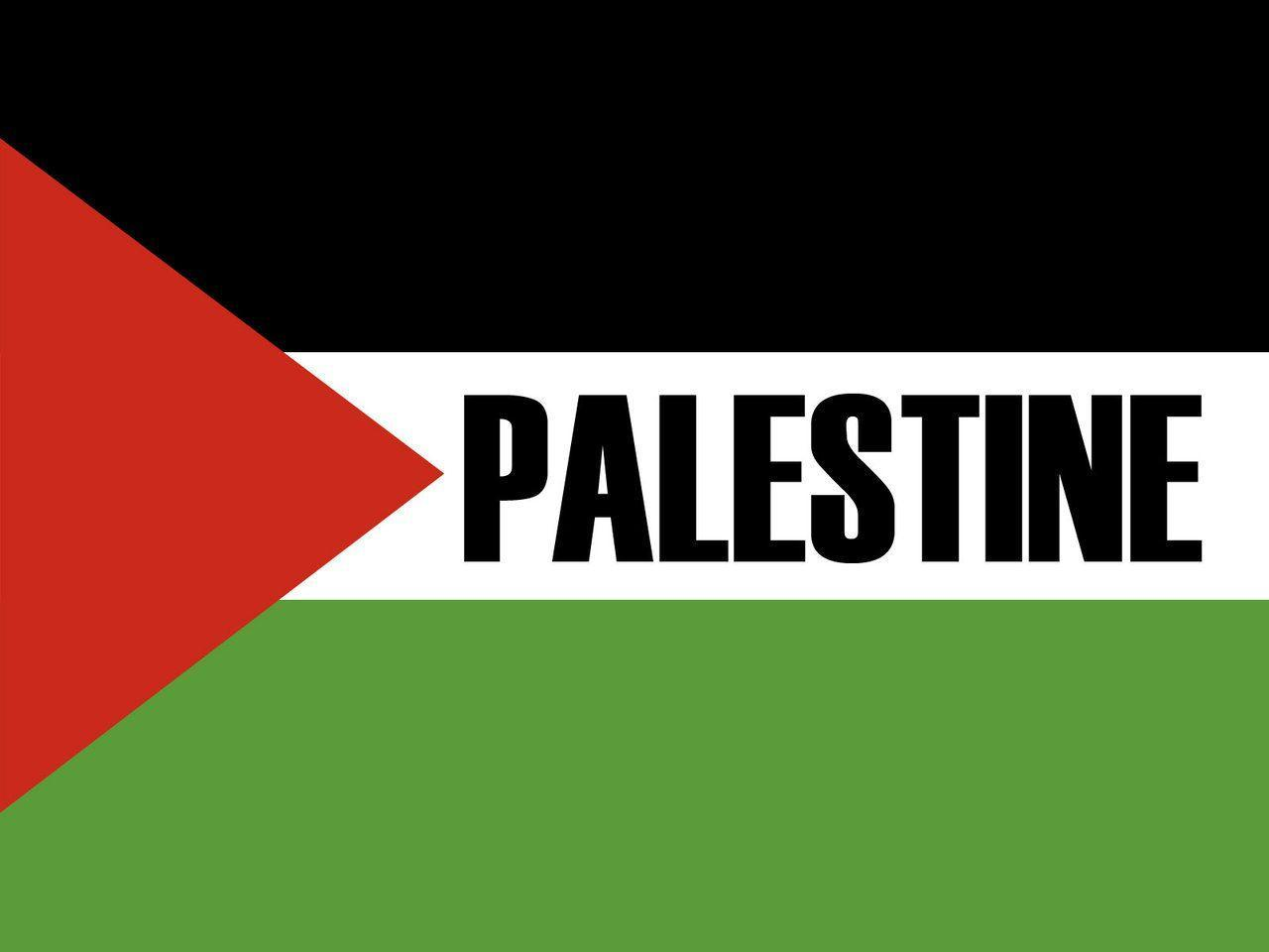 palestine victory wallpapers by zealousofpeace