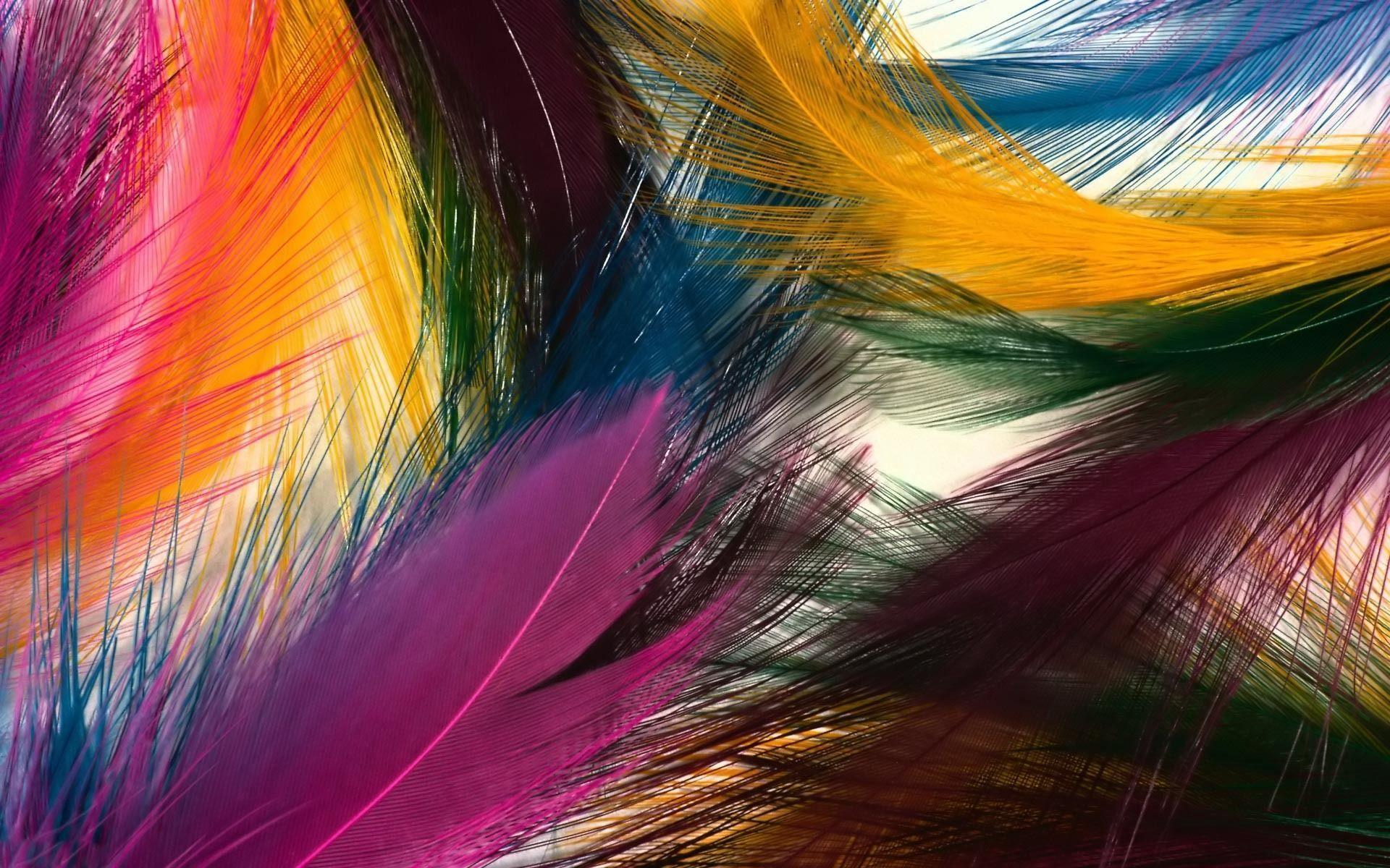 Wallpapers Of Peacock Feathers HD 2016 - Wallpaper CaveFeather Background Twitter