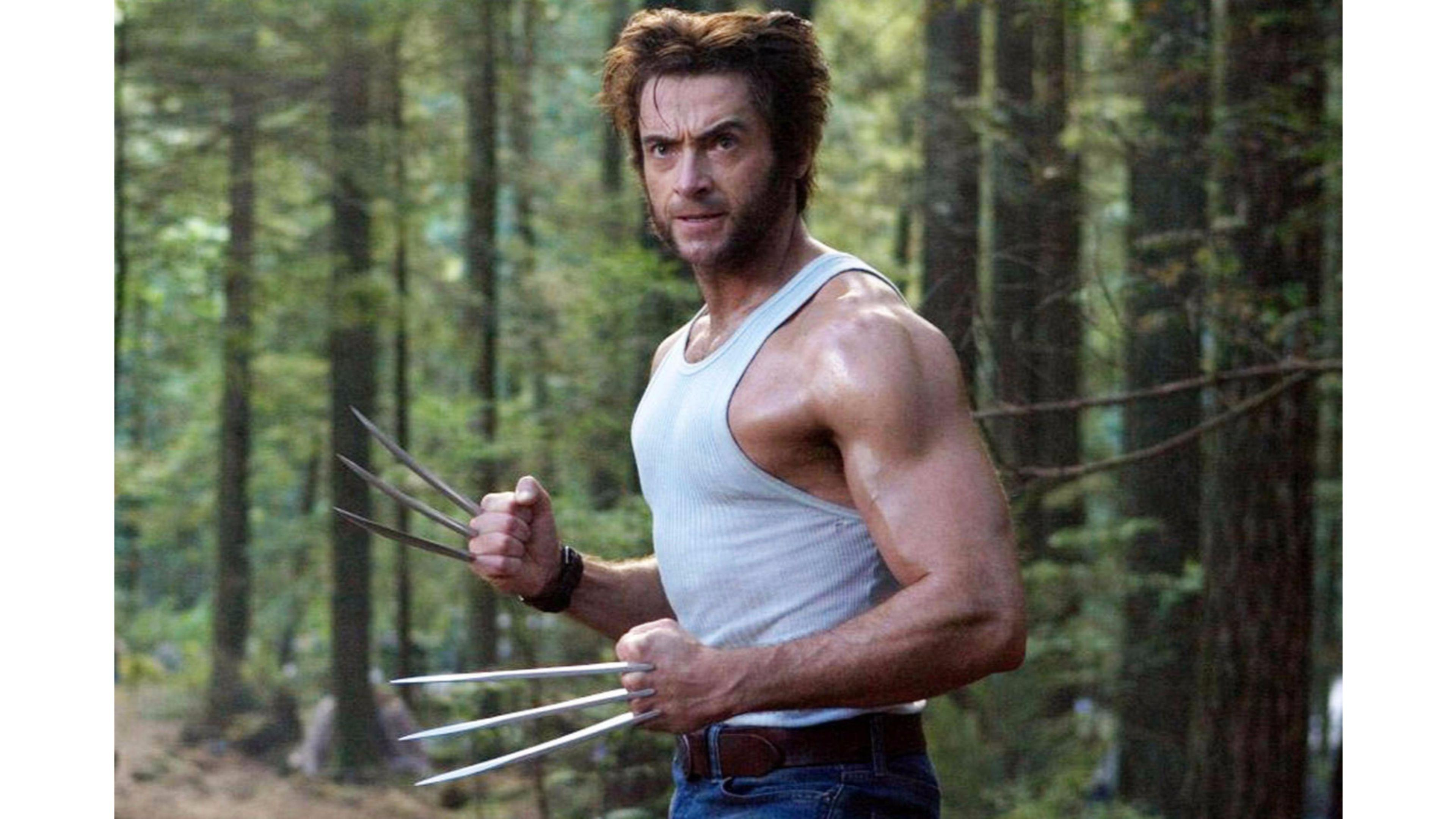 The wolverine 2016 wallpapers wallpaper cave - Wallpaper wolverine 4k ...