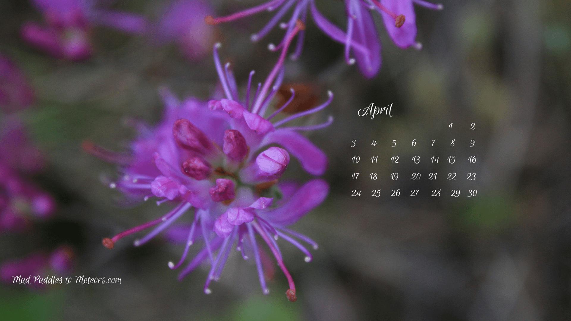 Nature S Calendar Wallpaper : Desktop wallpapers calendar april wallpaper cave