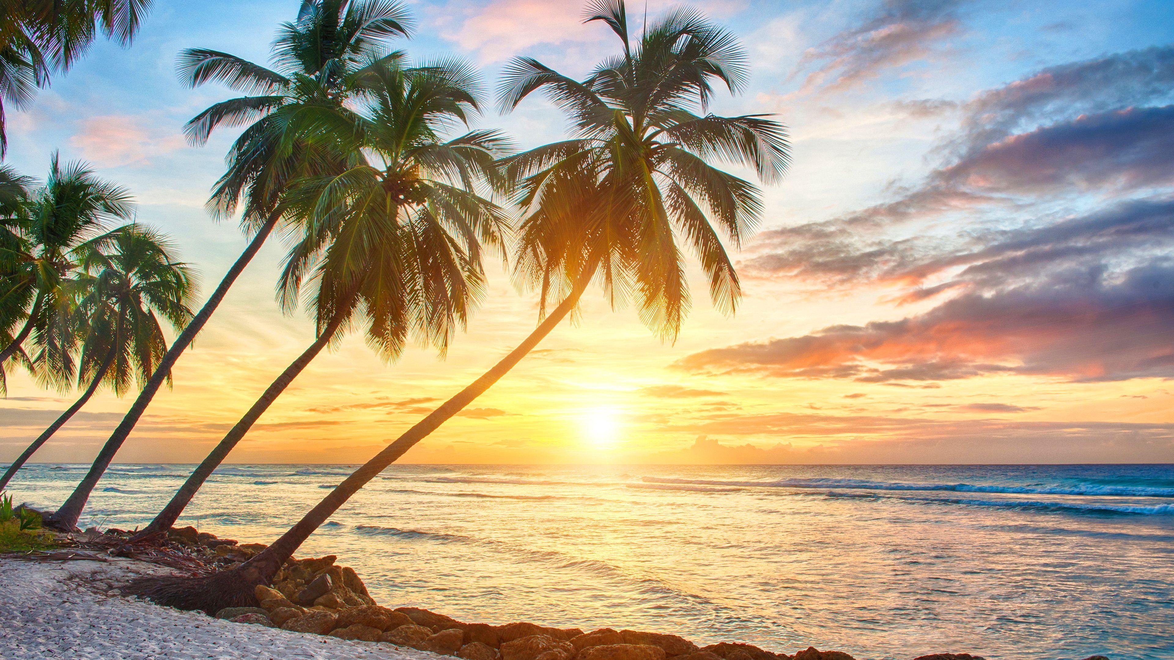 Hd Tropical Island Beach Paradise Wallpapers And Backgrounds: TROPICAL WALLPAPERS 2017