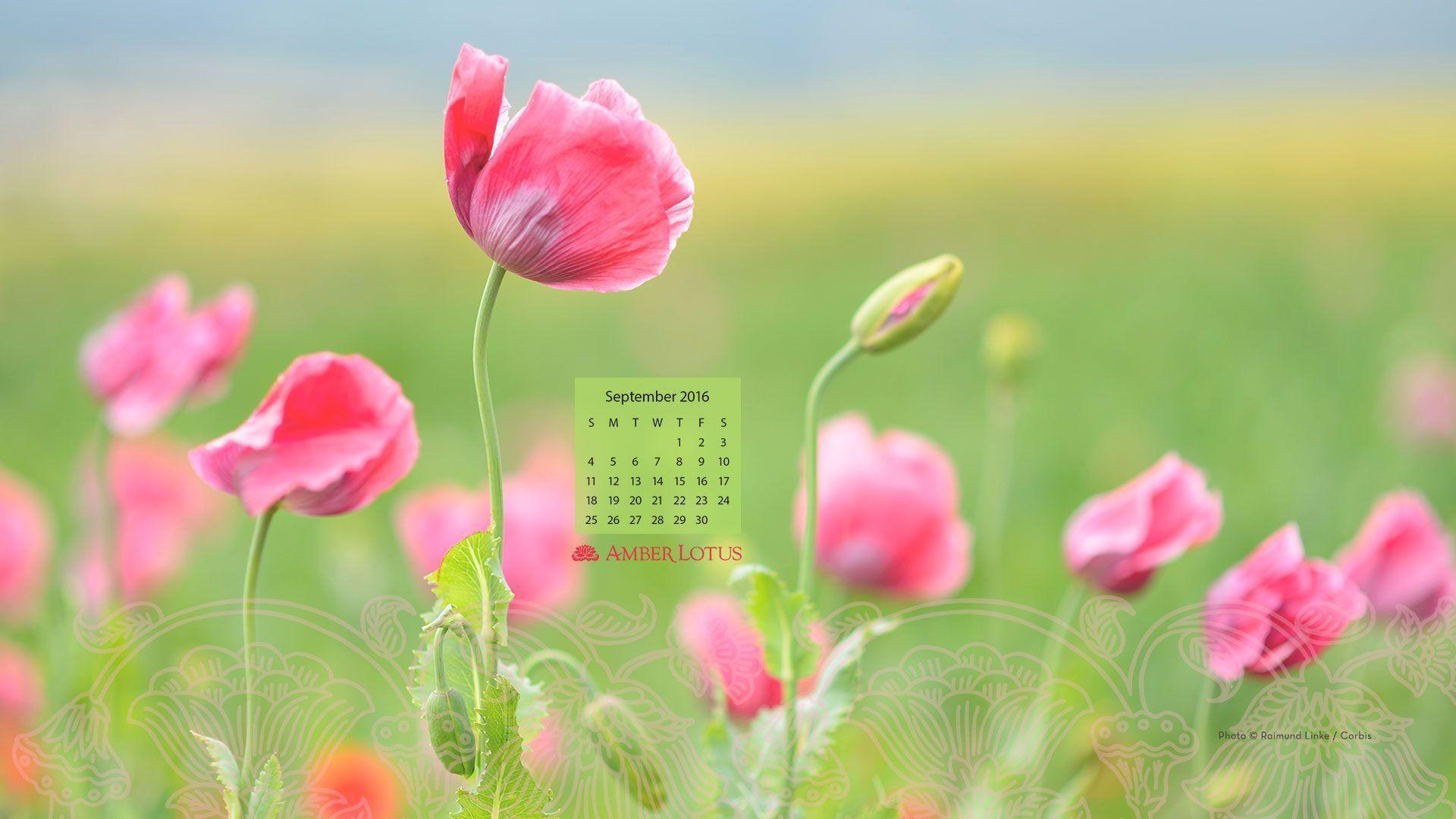 desktop wallpaper calendar september 2016 free to download