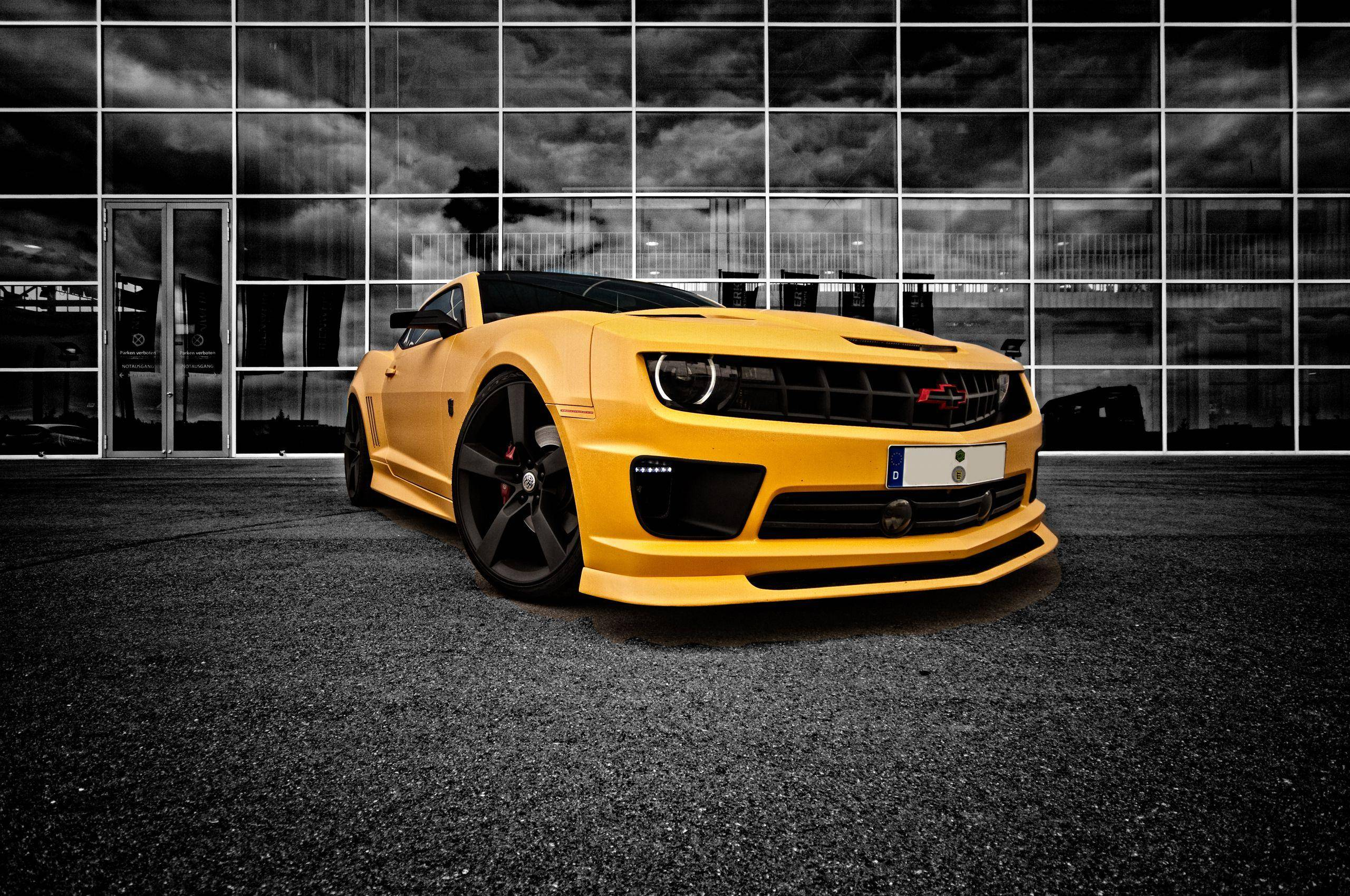 transformers bumblebee of Movie wallpapers HD wallpaper for