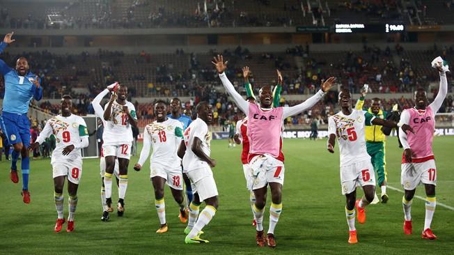 Senegal National Football Team Backgrounds 8