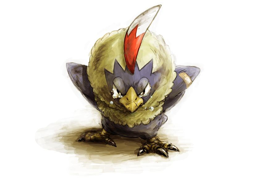 Rufflet download Rufflet image - Rufflet - Pokémon - Zerochan Anime Image Board - Rufflet HD Wallpapers