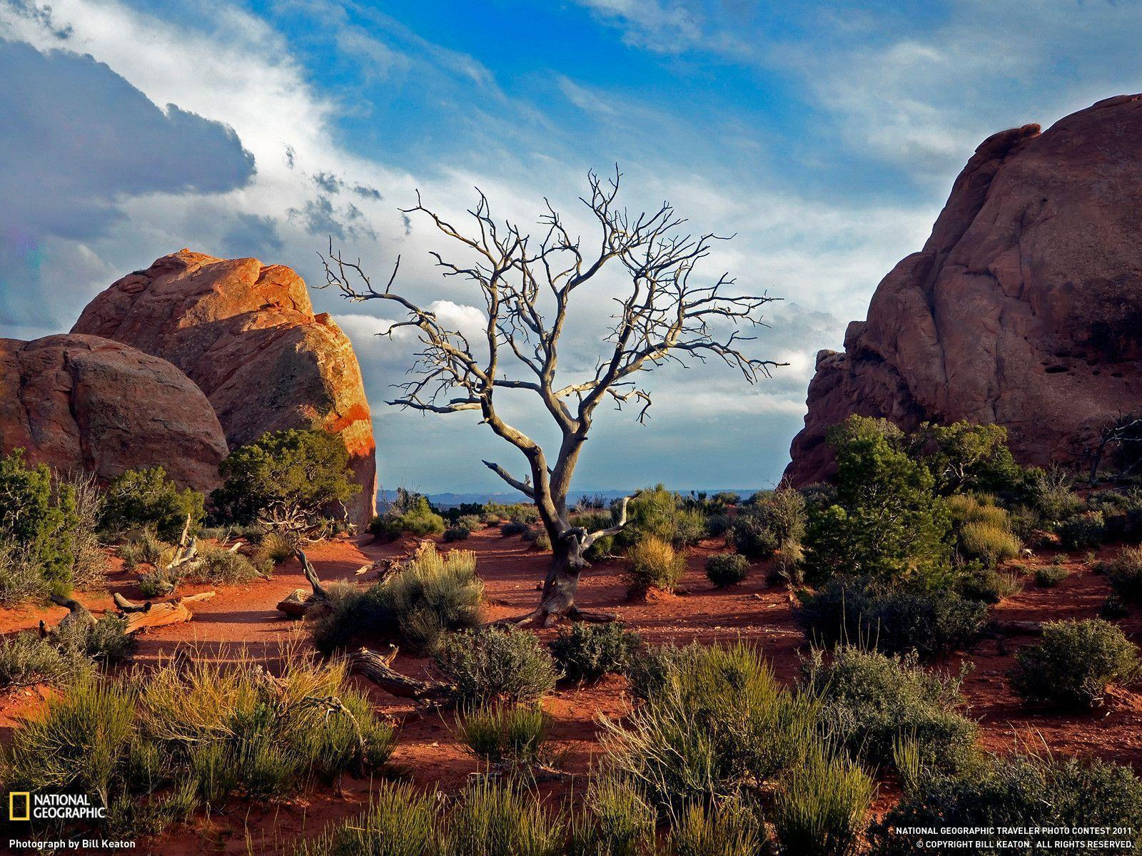Arches National Park Picture – Travel Wallpapers
