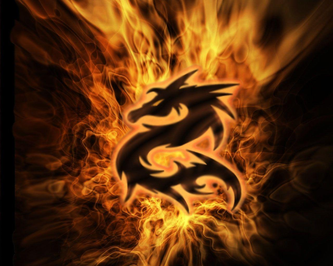 Fire Dragon Wallpapers Wallpaper Cave