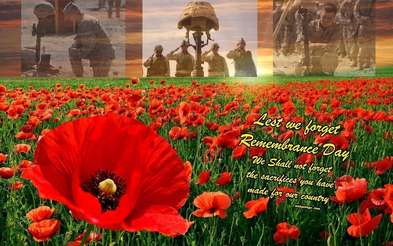 Remembrance day wallpapers wallpaper cave - Poppy wallpaper ...