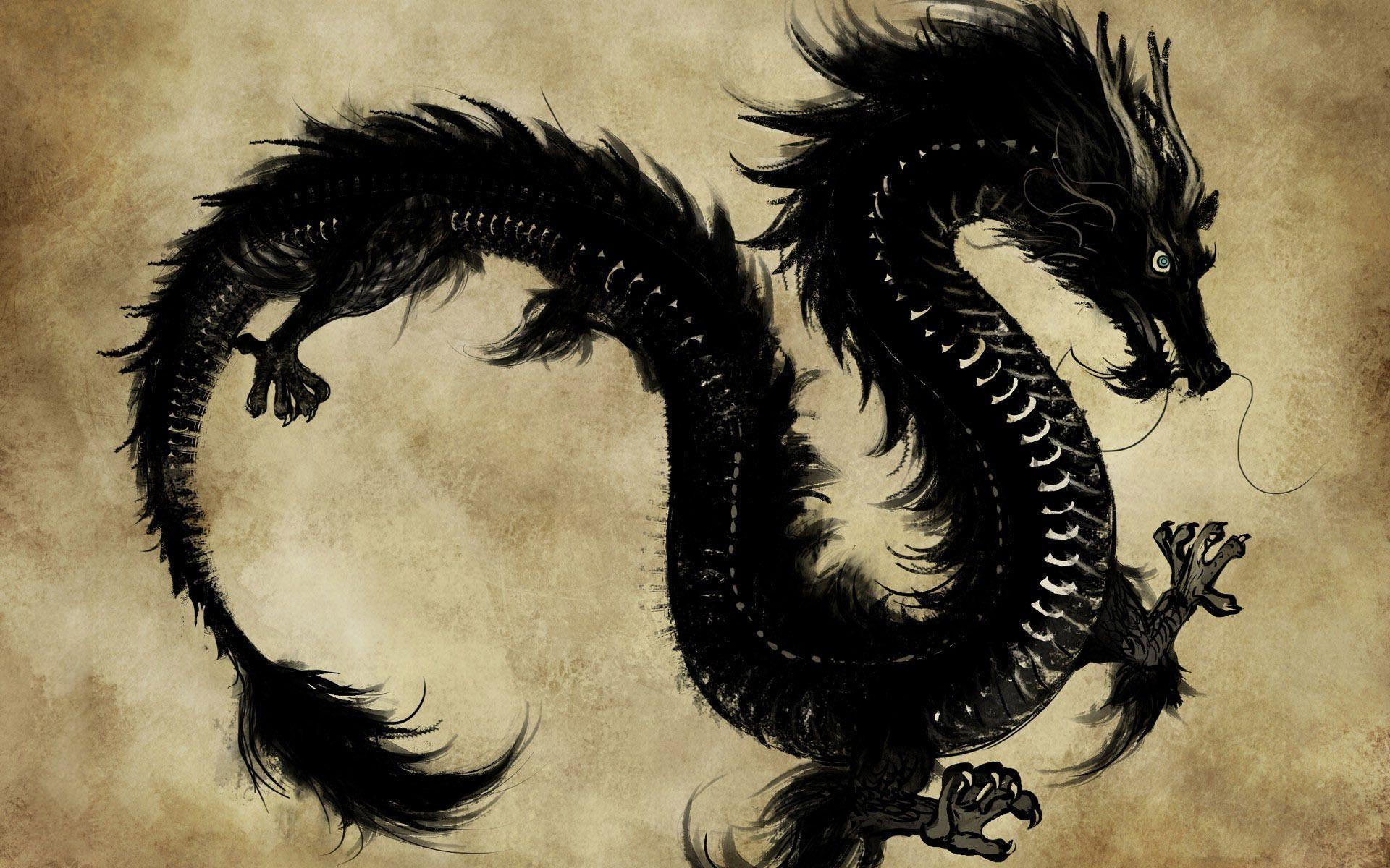 dragon wallpaper widescreen high resolution - photo #19