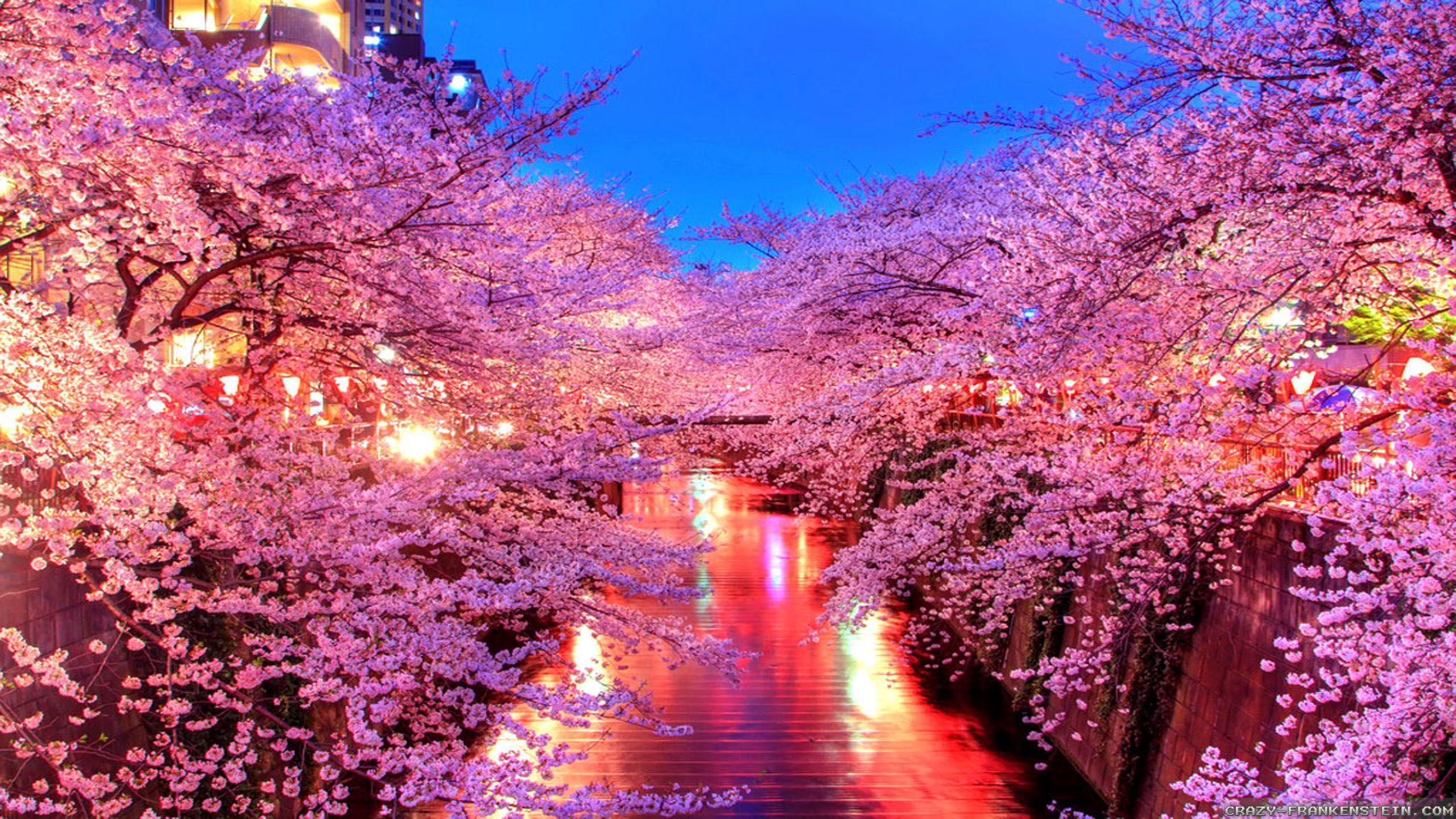 japan wallpapers wallpaper cave