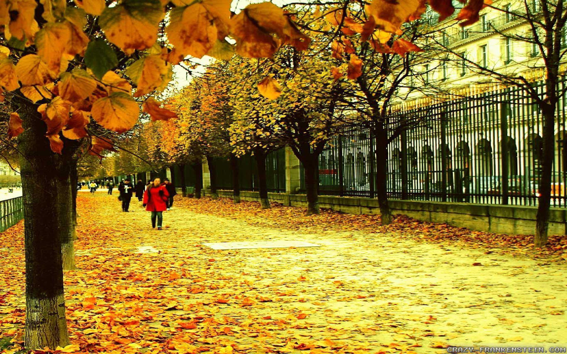 Autumn In France wallpapers