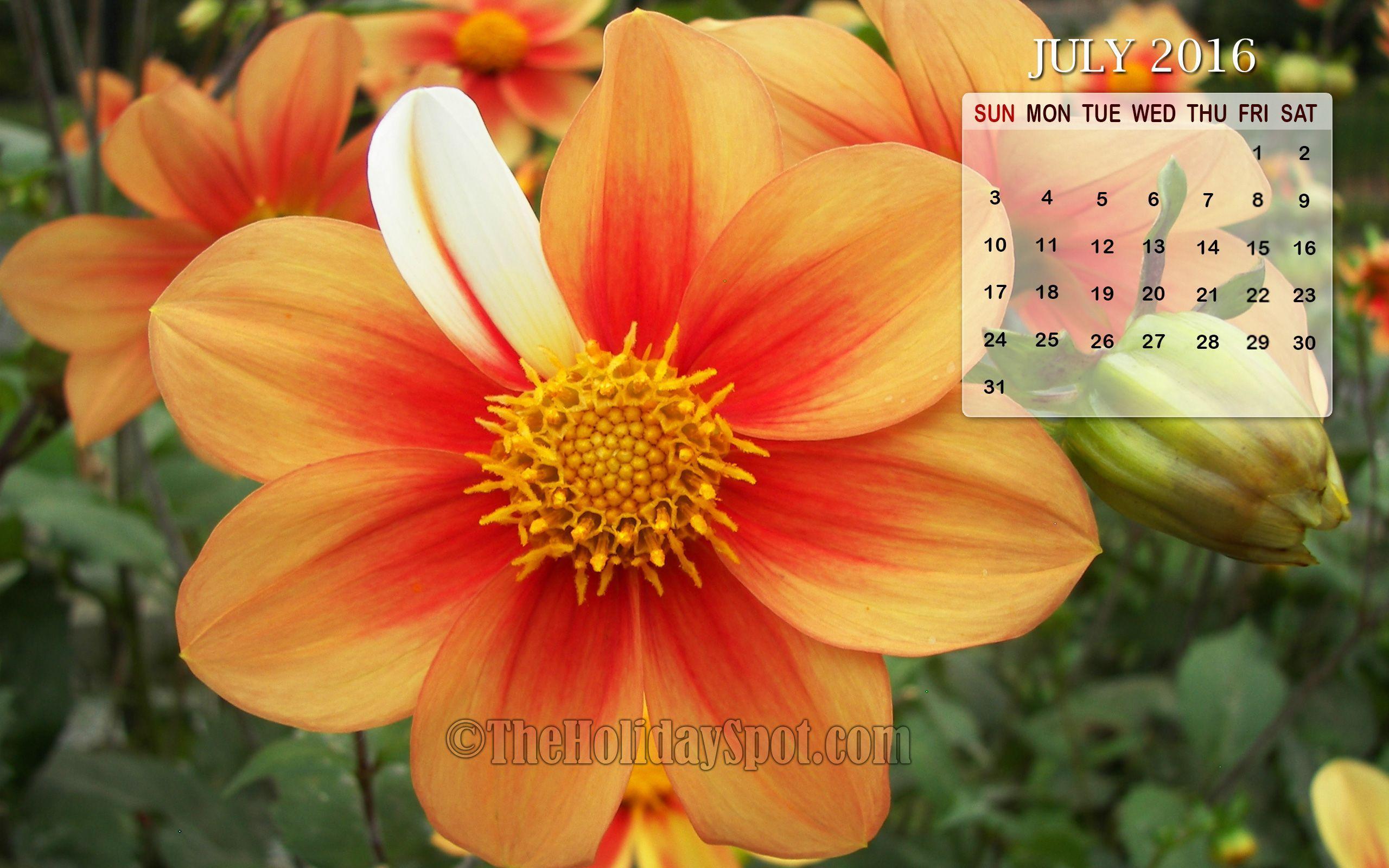 Calendar Wallpaper July : July calendar wallpapers wallpaper cave