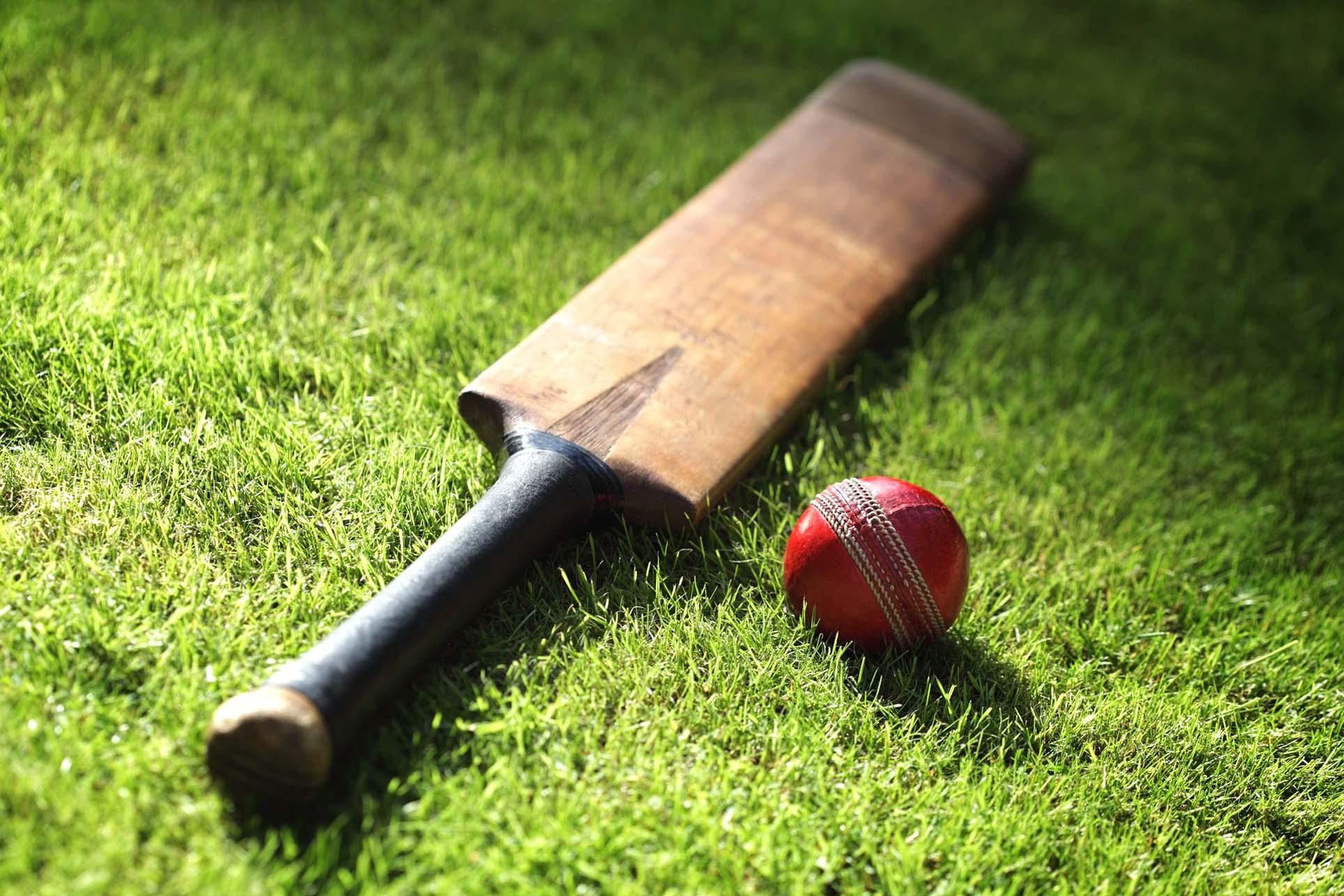 cricket hd