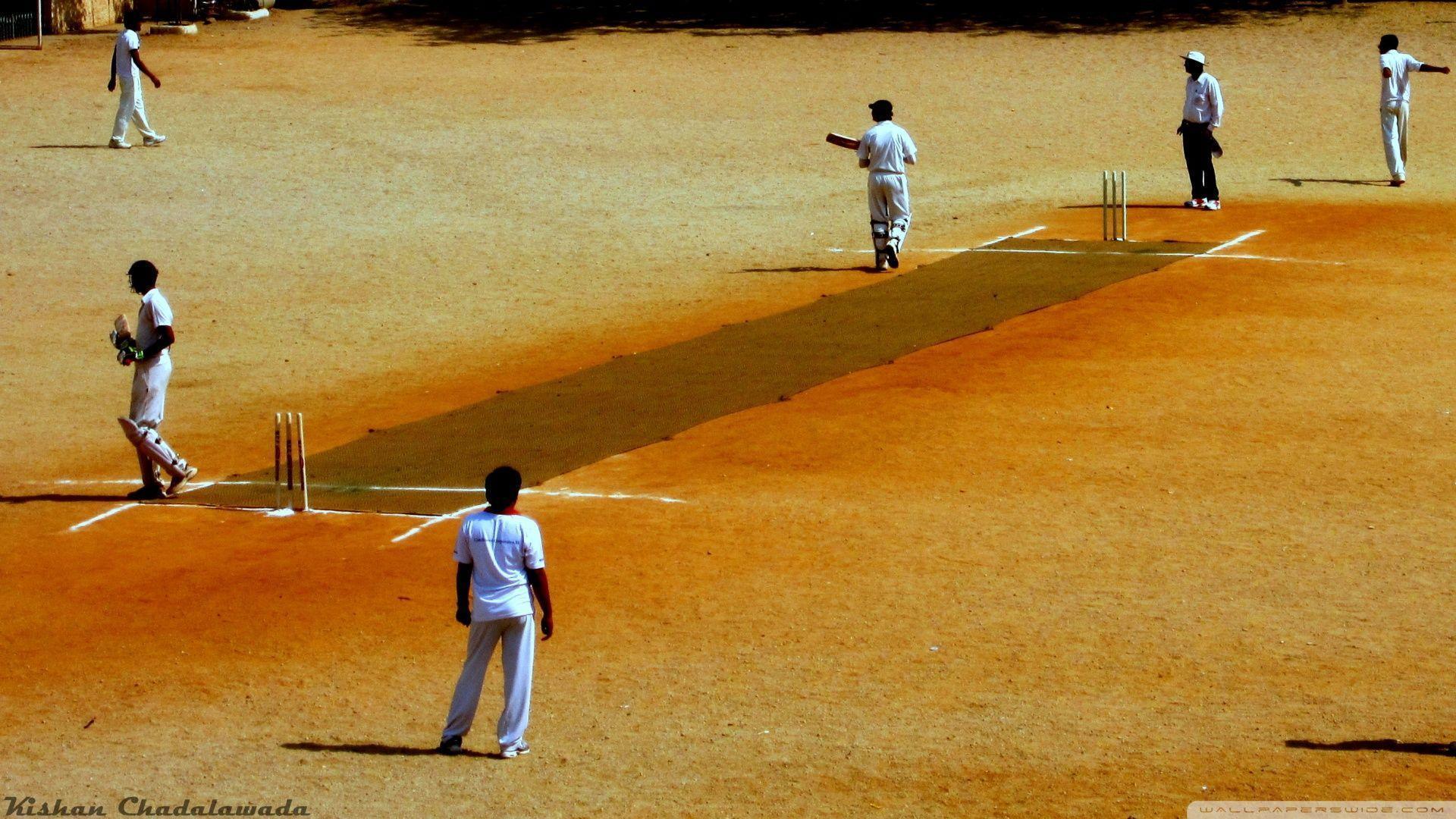 Cricket Wallpapers - Wallpaper Cave