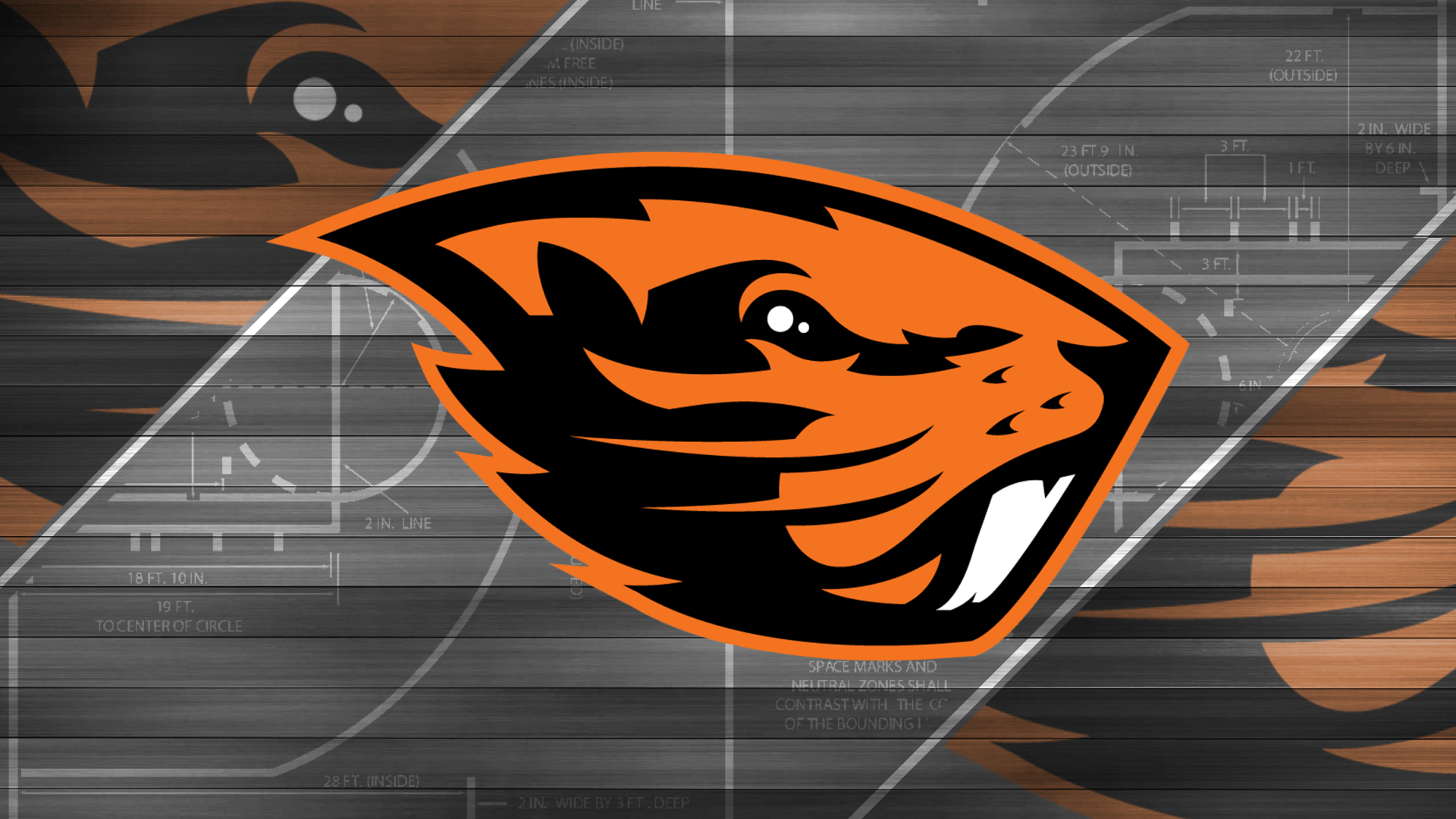 Oregon State Beavers Wallpapers - Wallpaper Cave