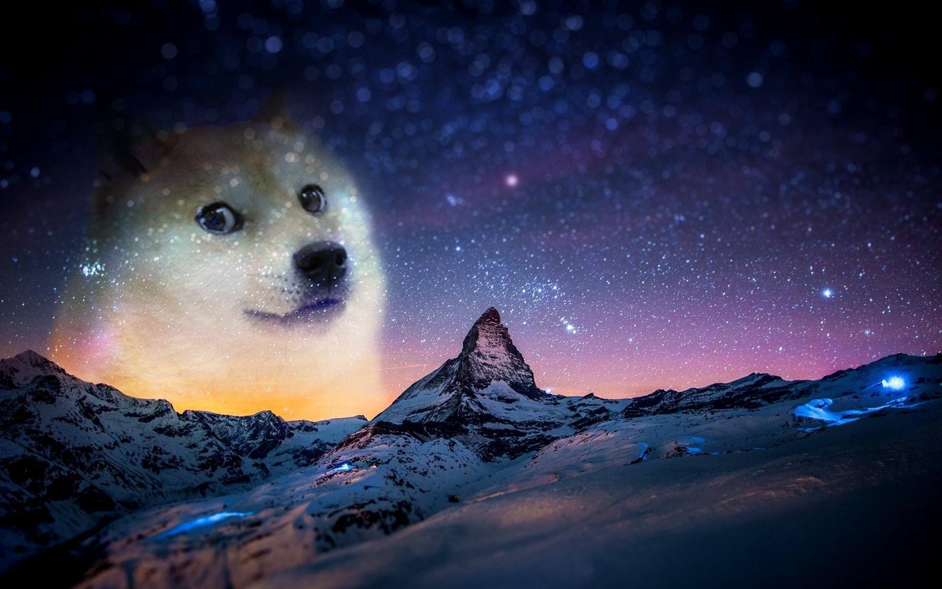 Free Doge Wallpapers For Android « Long Wallpapers