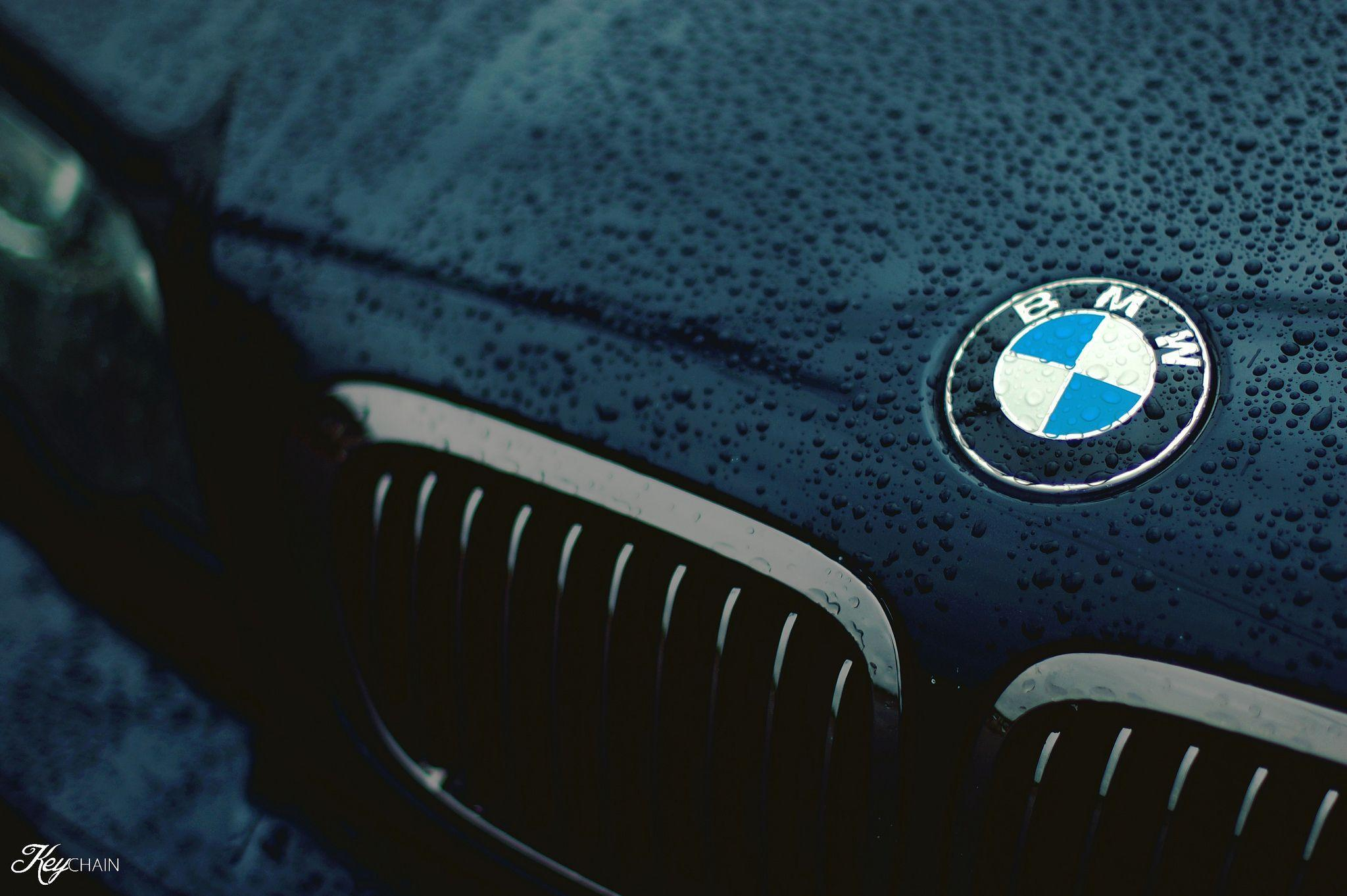 HD Bmw Logo Wallpaper, Live BMW Logo Wallpapers (ON428+ WP)