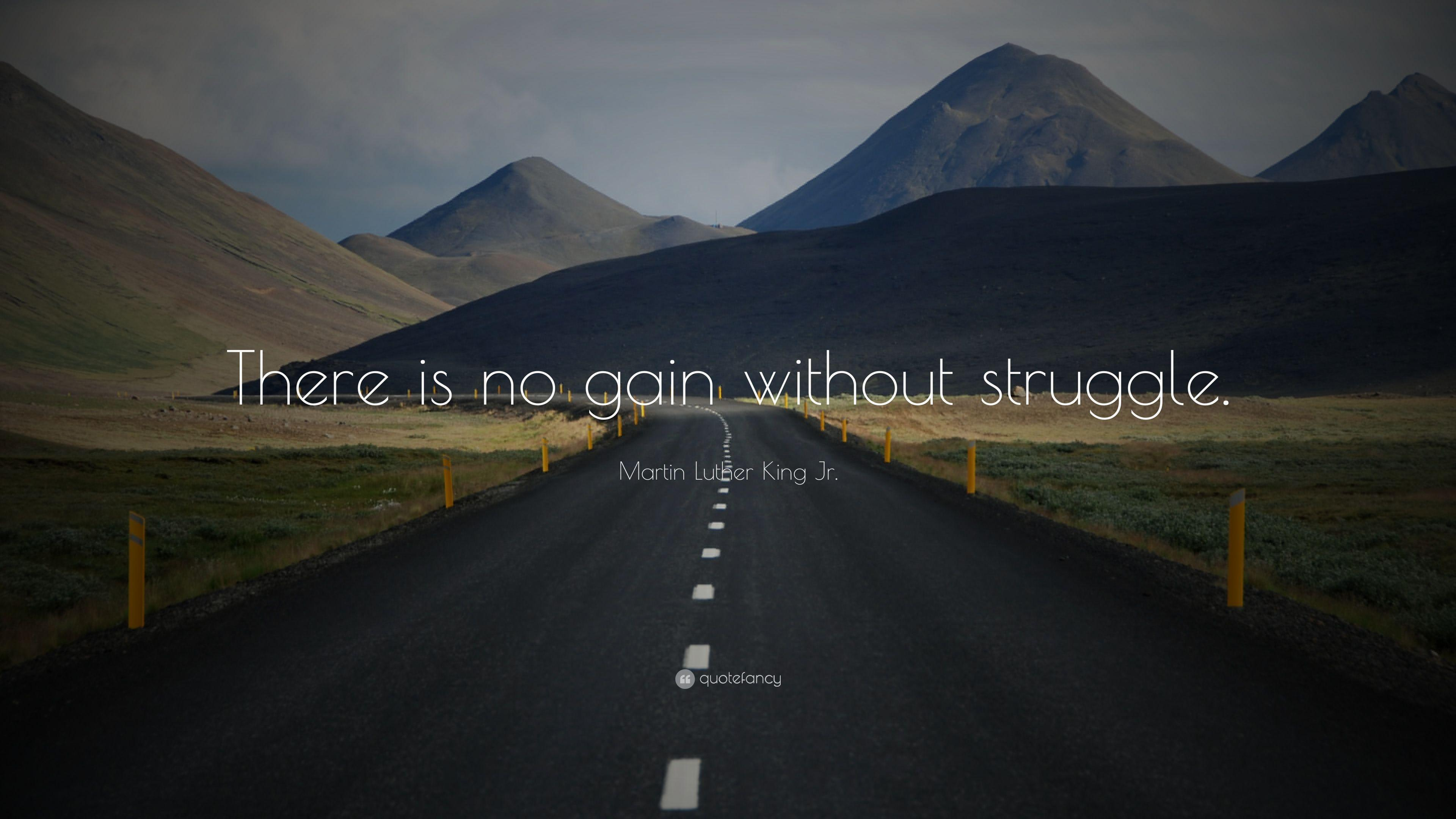 """Martin Luther King Jr. Quote: """"There is no gain without struggle ..."""