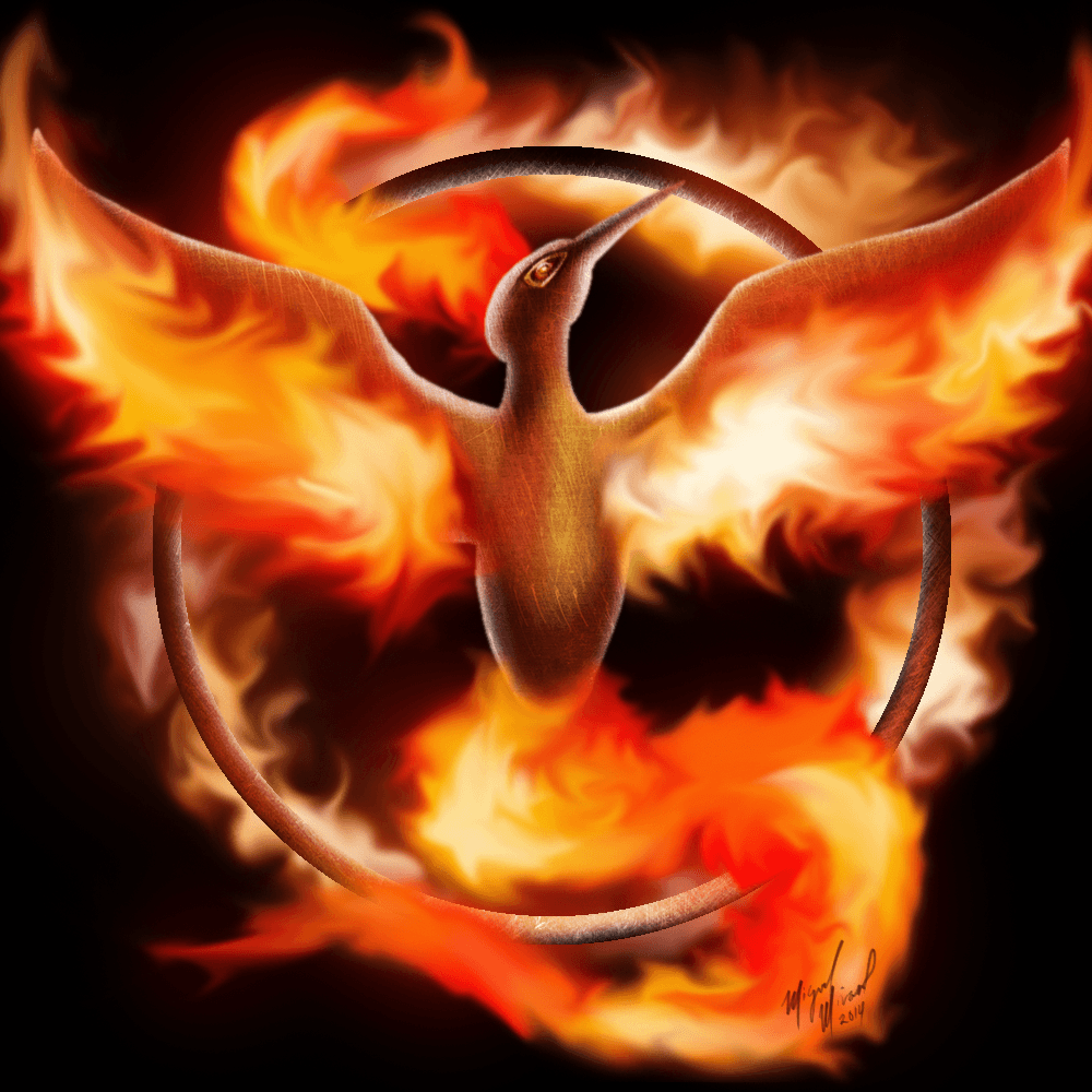 Moltres Wallpapers – Epic Wallpaperz