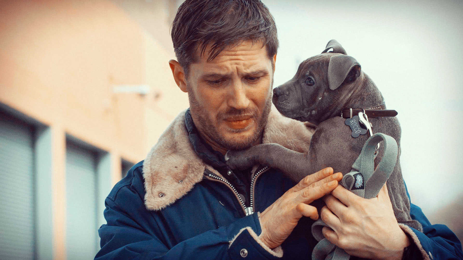 Tom Hardy Wallpapers High Resolution and Quality Download