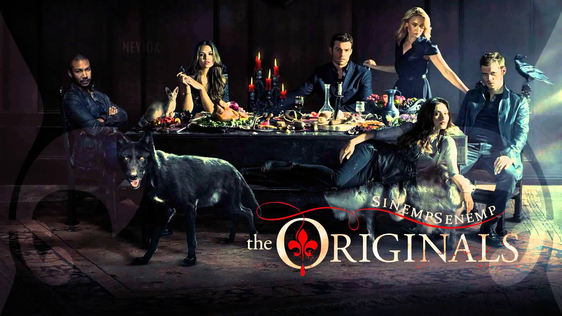 The originals season 3 episode 2 cast / Academy award dvd screeners