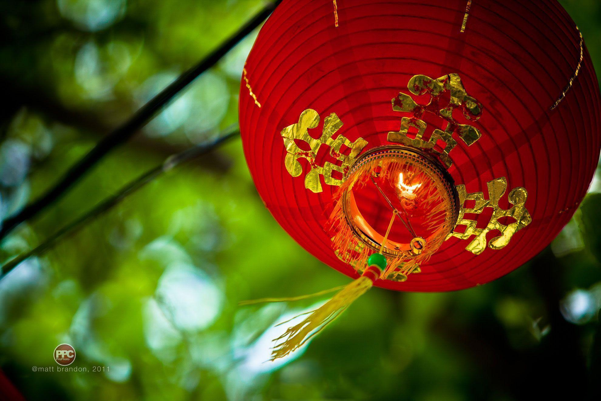 Chinese New Year Wallpaper by Matt Brandon - ProVideo Coalition