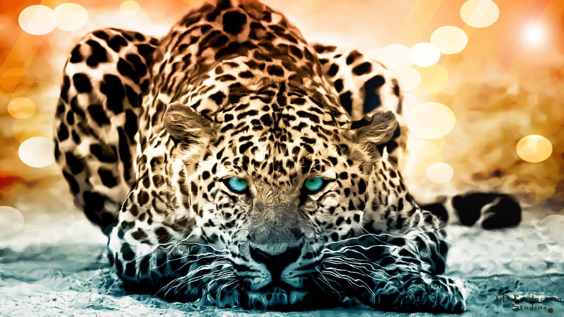 188 Jaguar HD Wallpapers | Backgrounds - Wallpaper Abyss