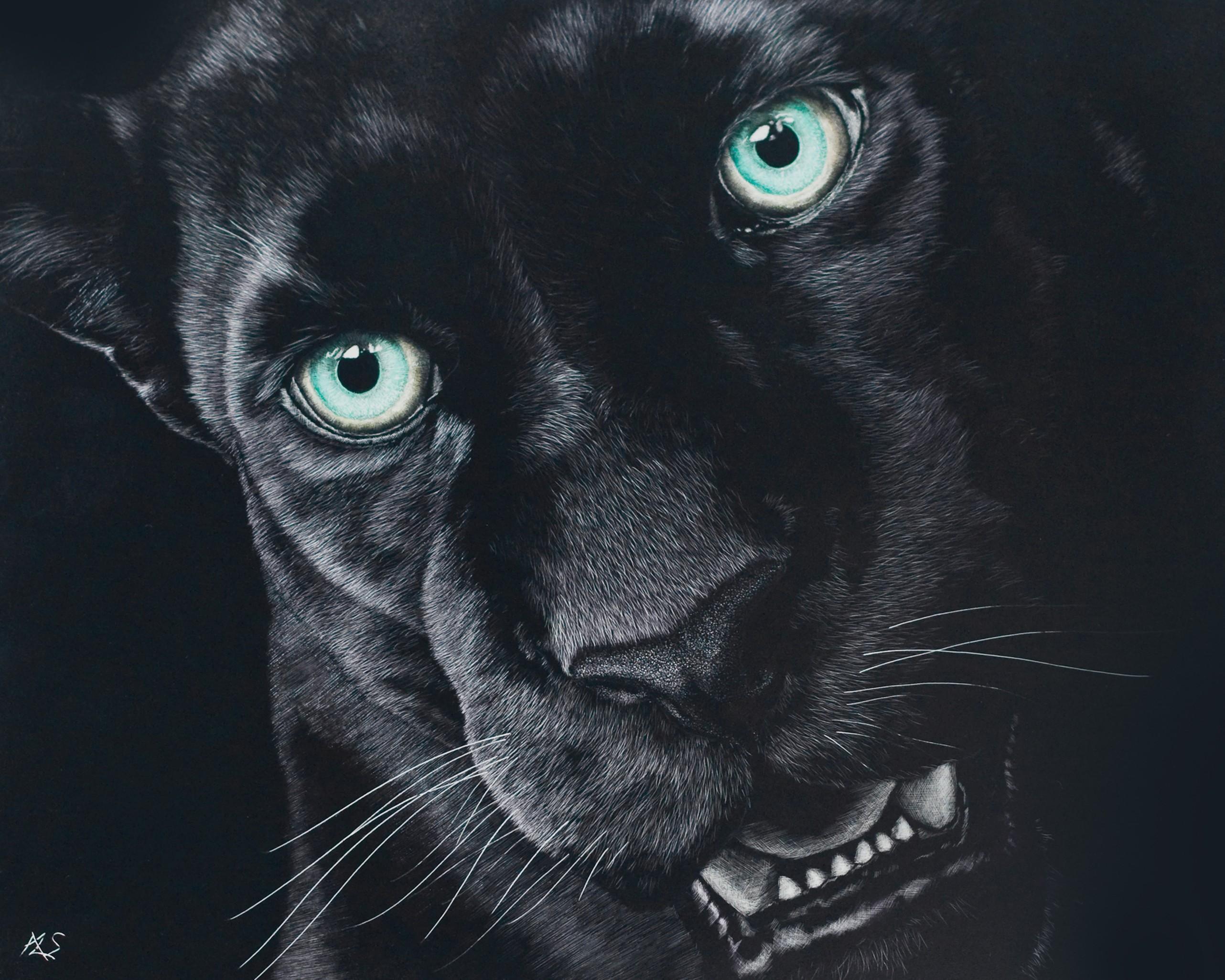 Black Jaguar Wallpapers HD Download