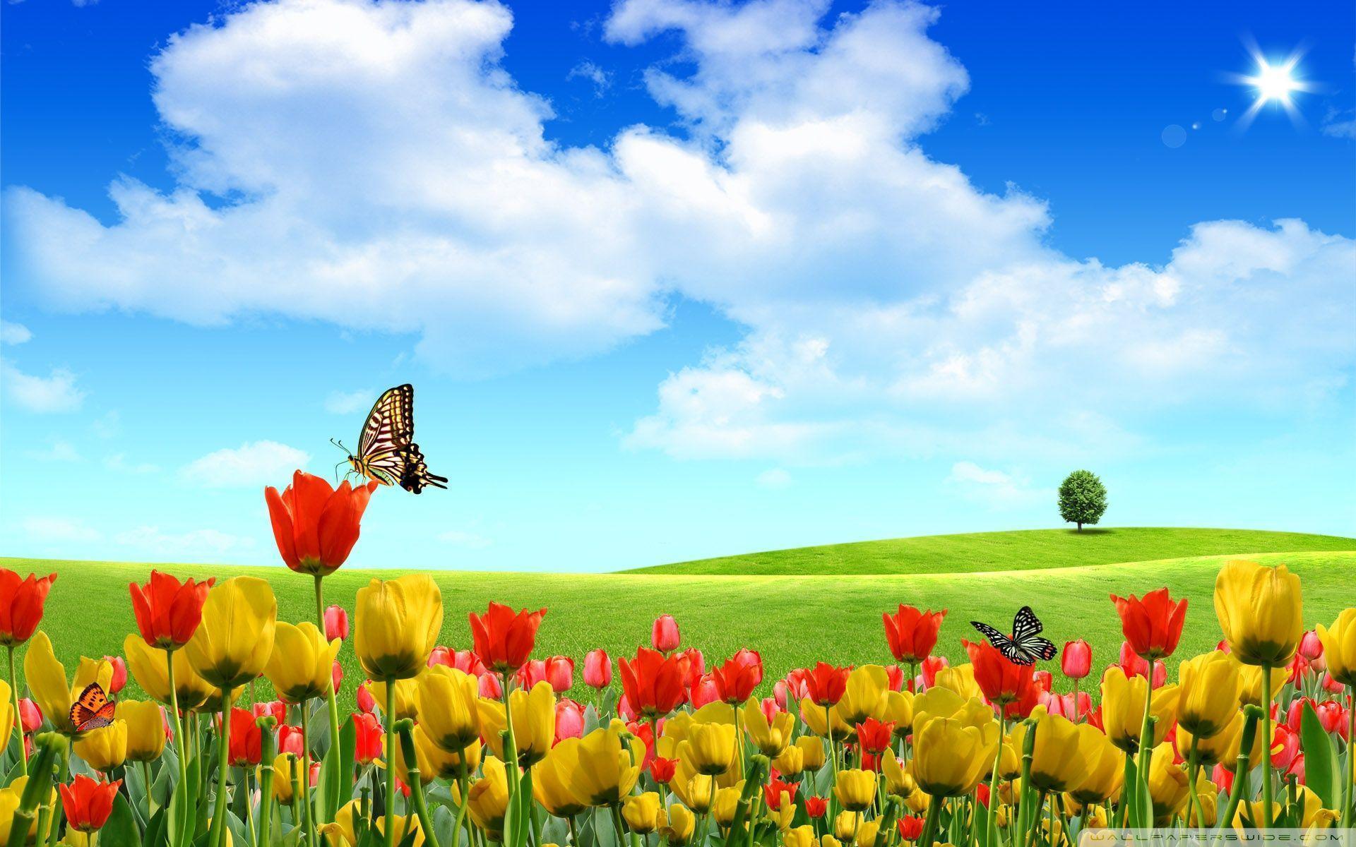 Spring Desktop Wallpaper Collection (27+)