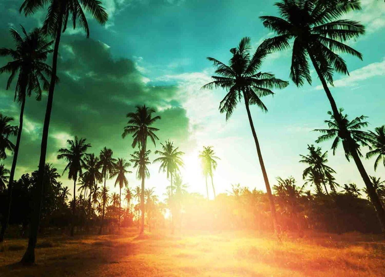 Hawaiian Islands Wallpaper - Android Apps on Google Play