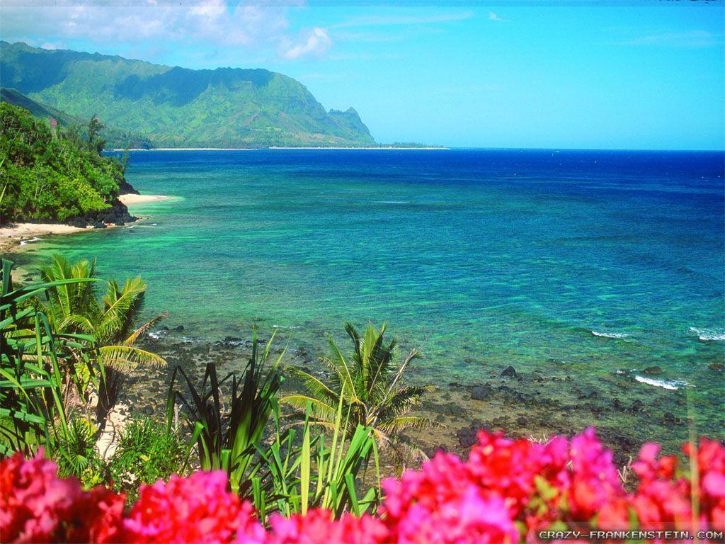 Adorable HDQ Backgrounds of Hawaiian, 44 Hawaiian Full HD Wallpapers