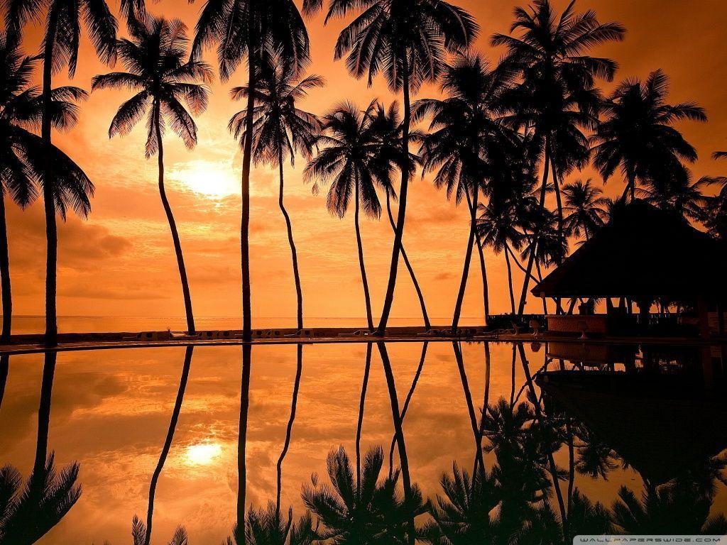 Hawaiian Beach Sunset Reflection HD desktop wallpaper : High ...