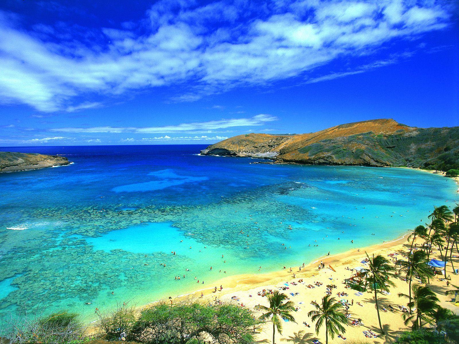 Hawaiian Wallpaper - WallpaperSafari