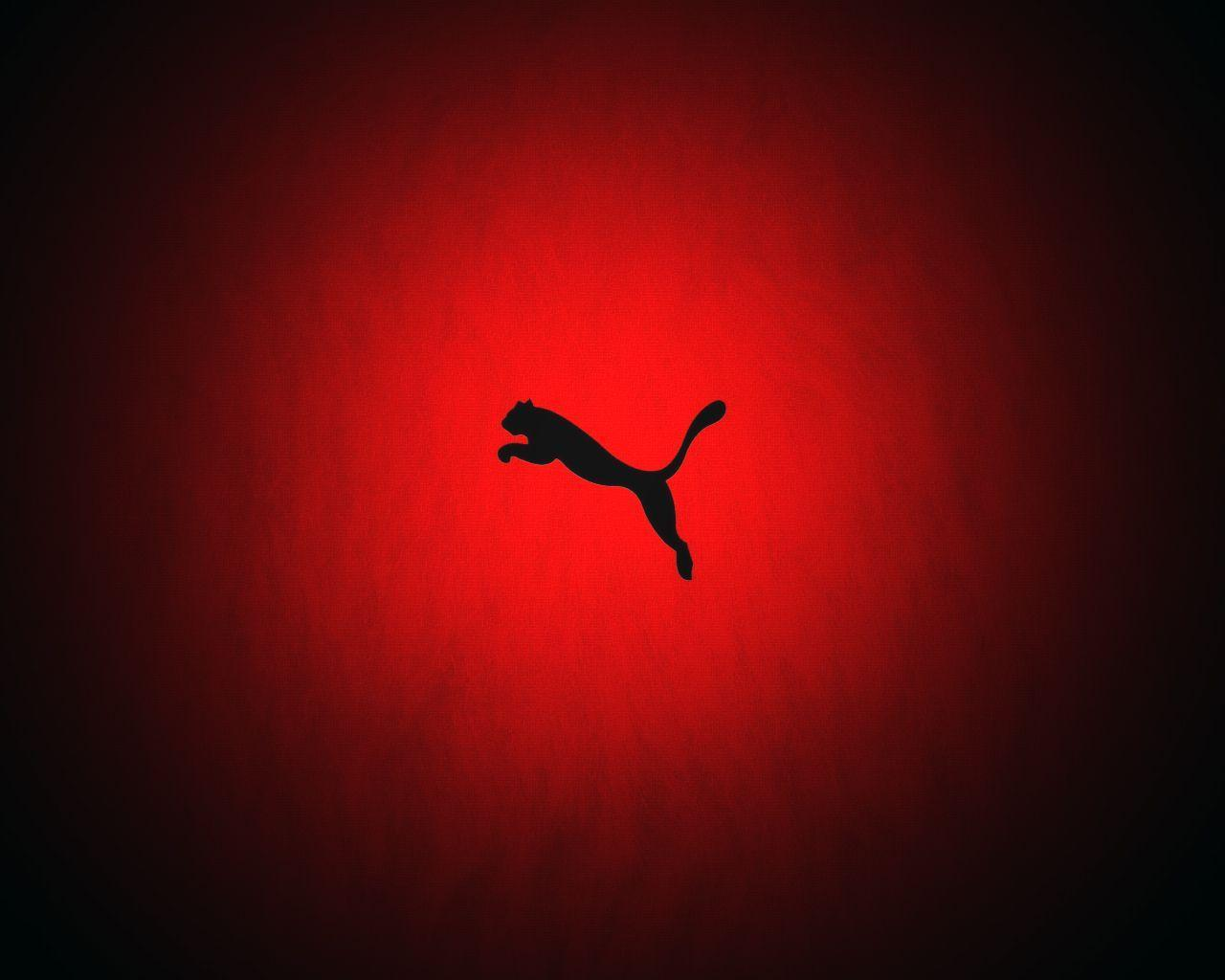 HD Puma Wallpapers | Puma Best Pictures Collection